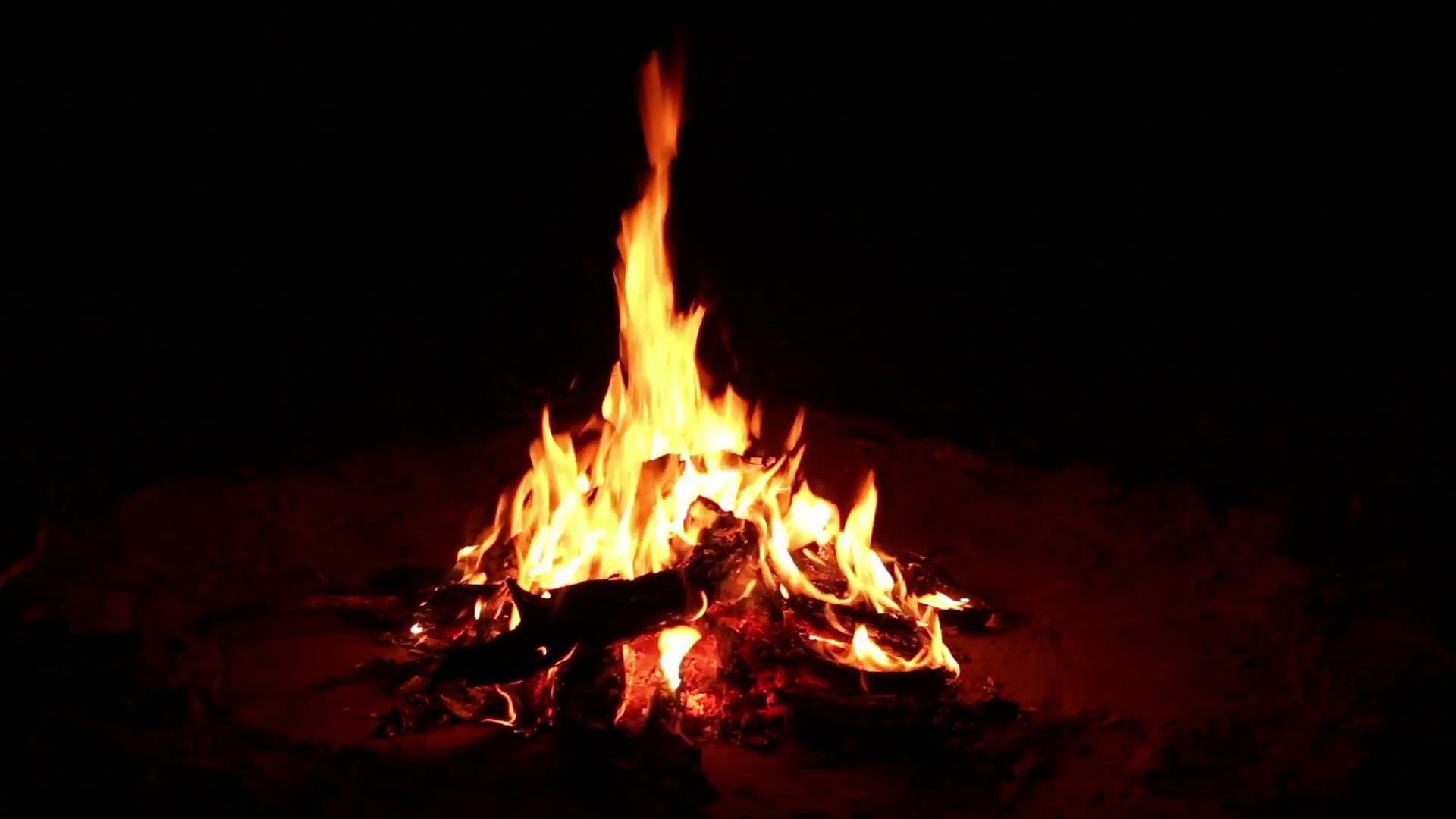 Nighttime campfire Stock Video Footage - Videoblocks