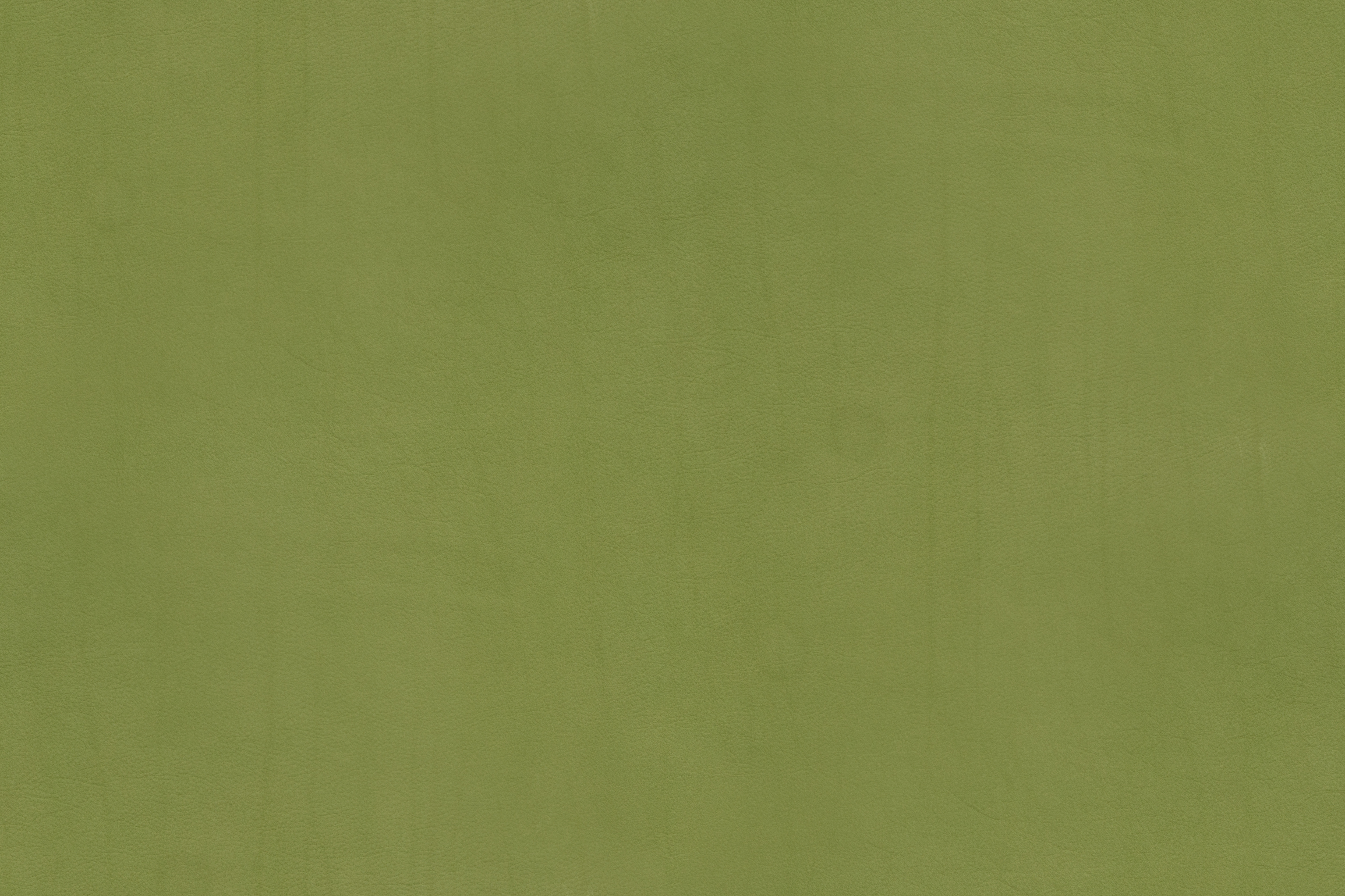 Leather Texture – Campo Series – Lime