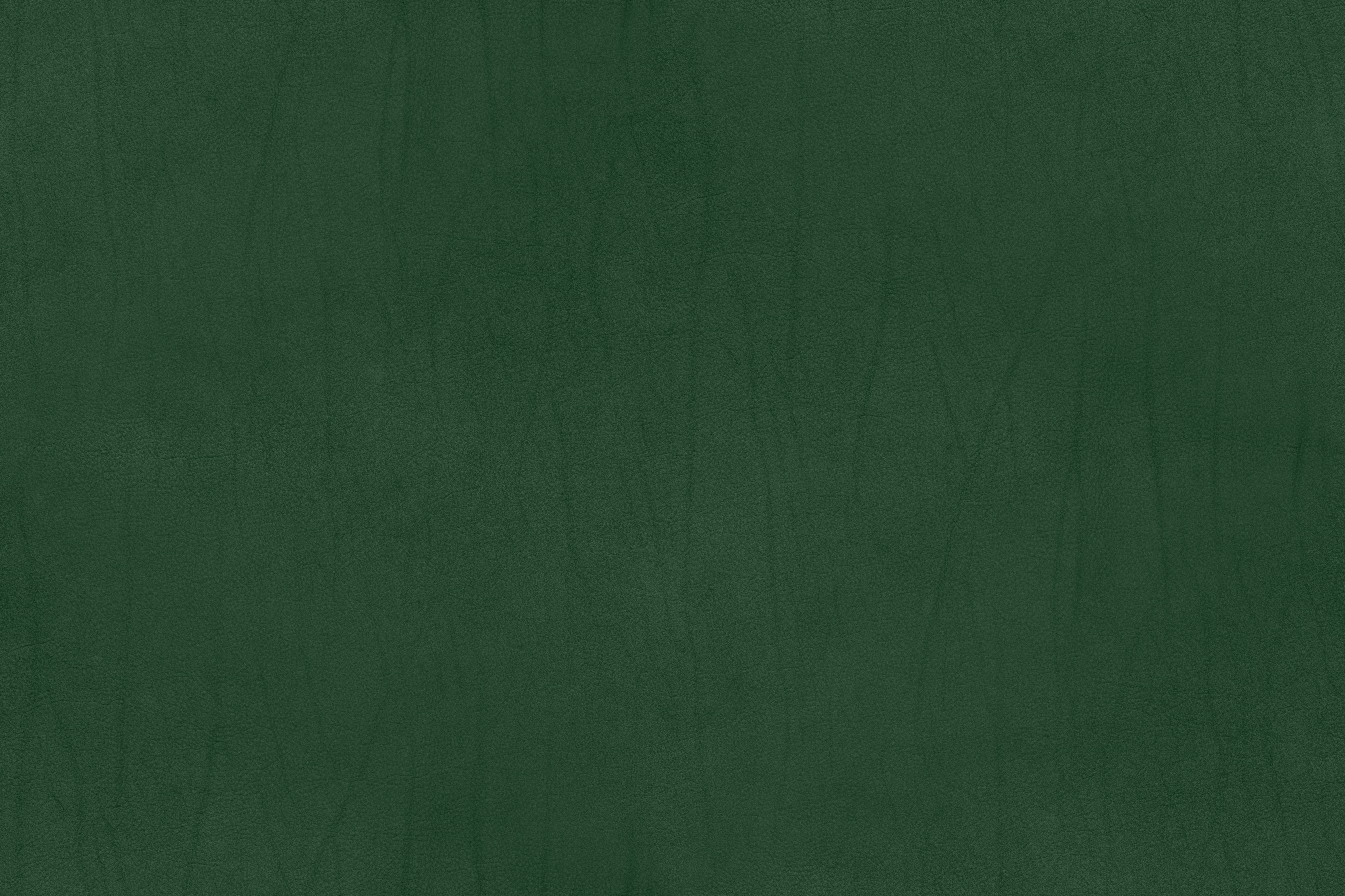 Leather Texture – Campo Series – Green
