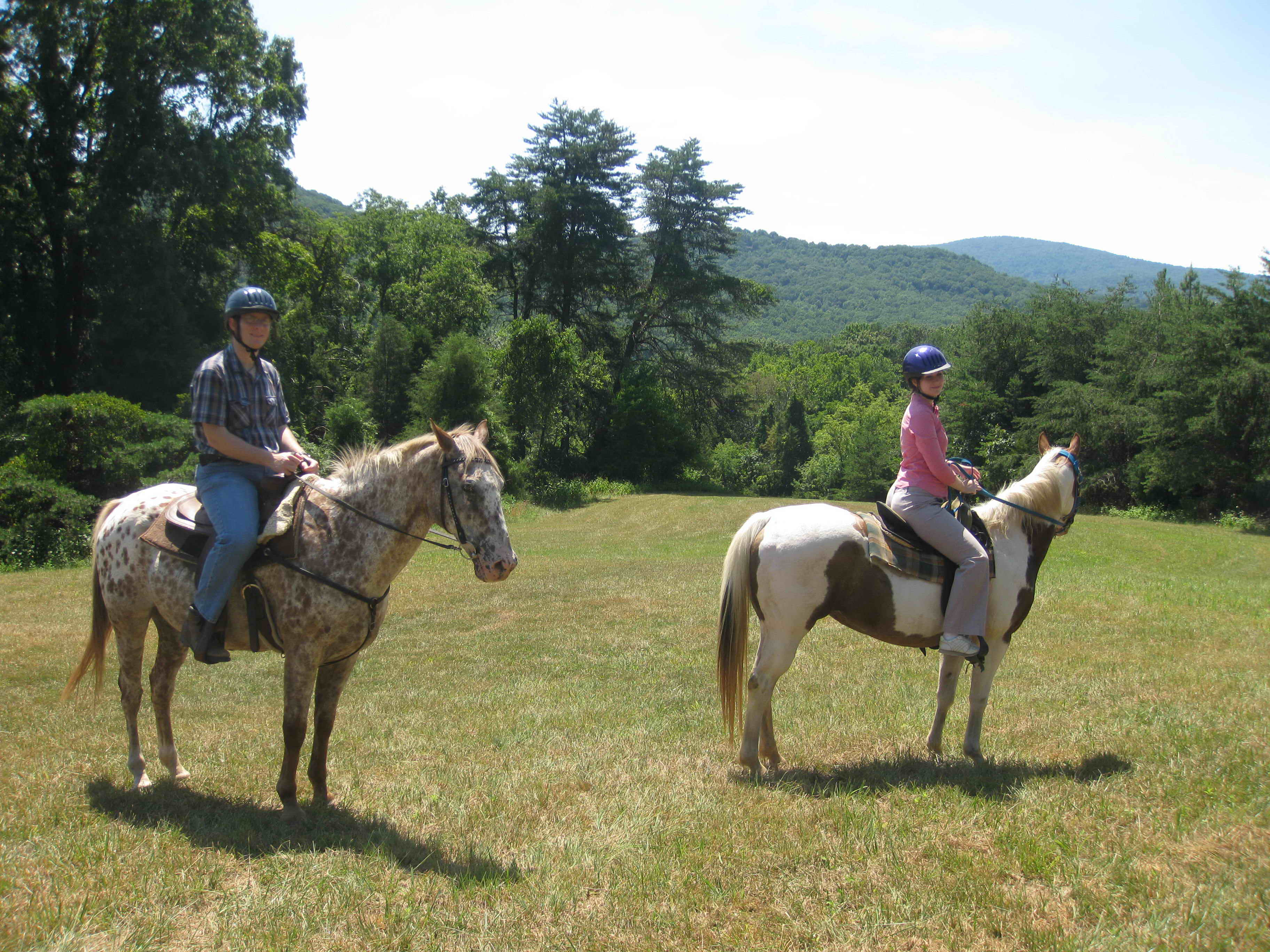 Where Can I Ride Horses Near Me - Best Horse 2017