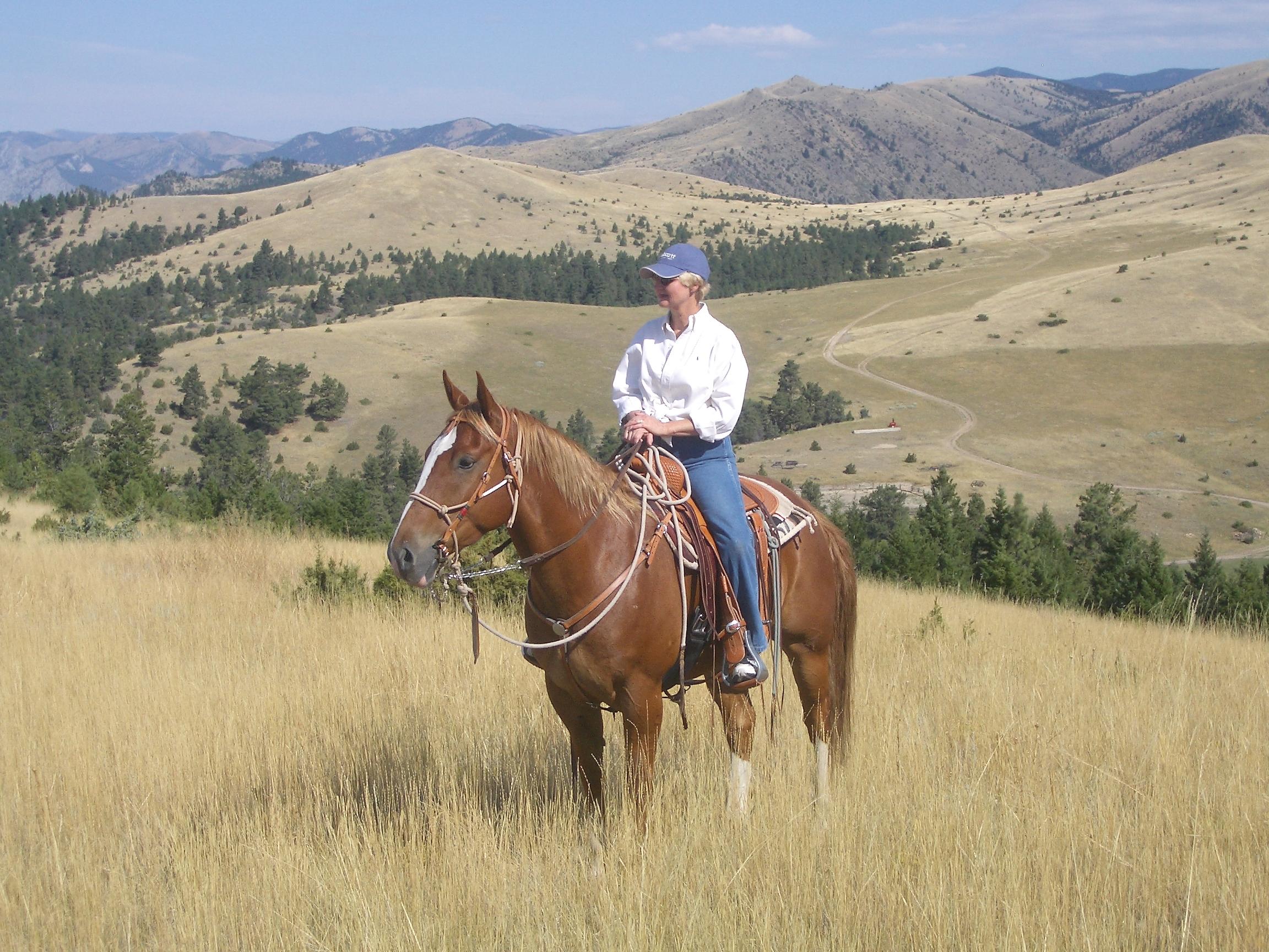 where can I ride a quarter horse? | GG Journeys