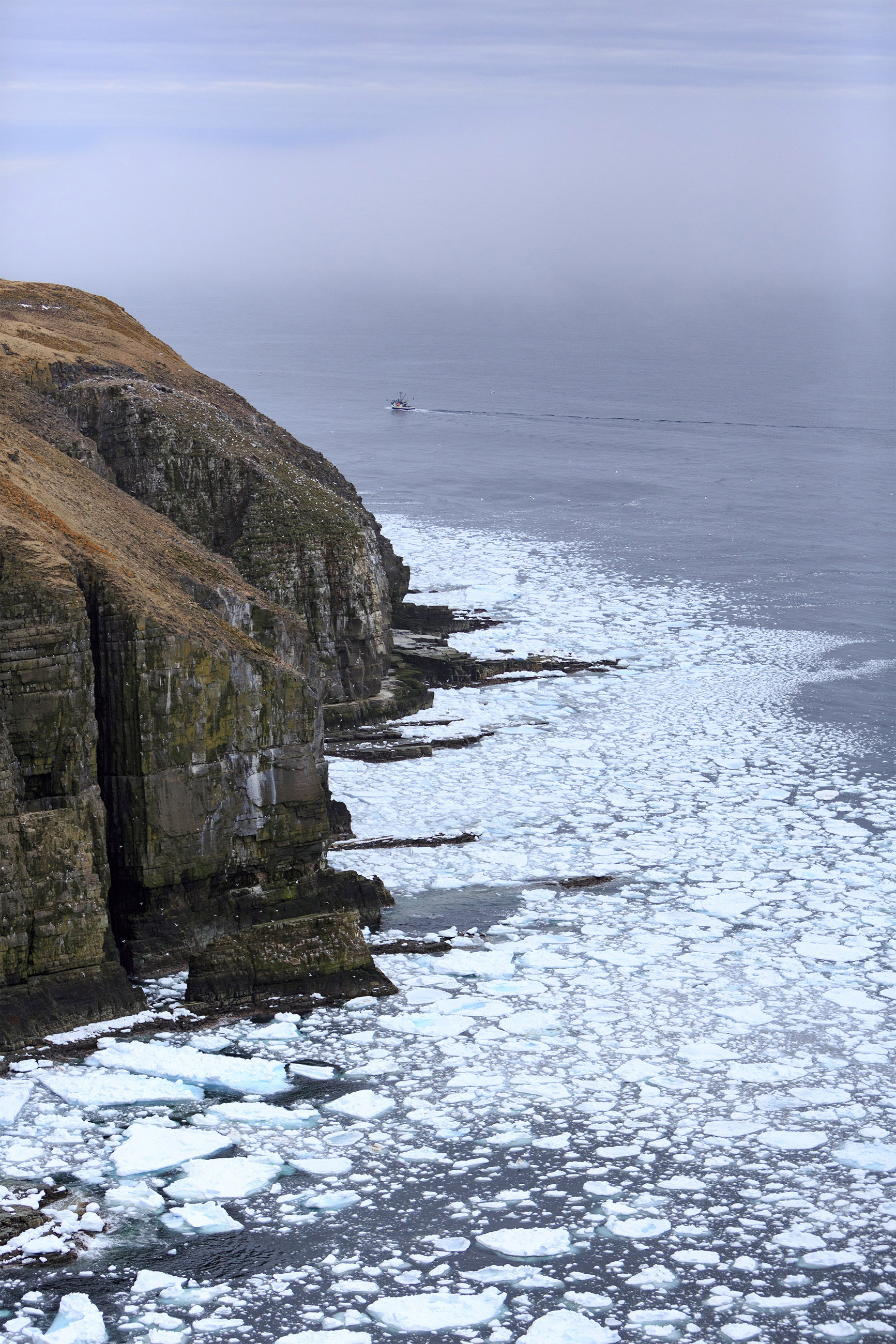 Cape st. marys ocean ice photo