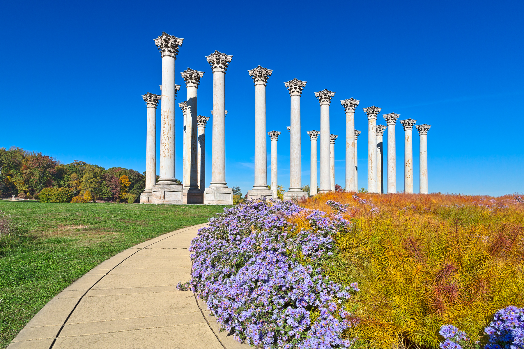 Capitol Arboretum Columns - HDR, Age, Pillars, Sky, Shades, HQ Photo