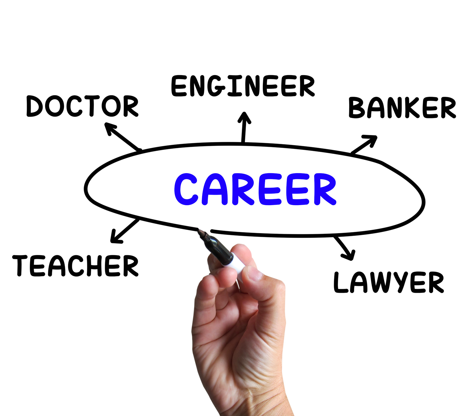 Career Diagram Means Profession And Field Of Work, Job, Work, Teacher, Professional, HQ Photo