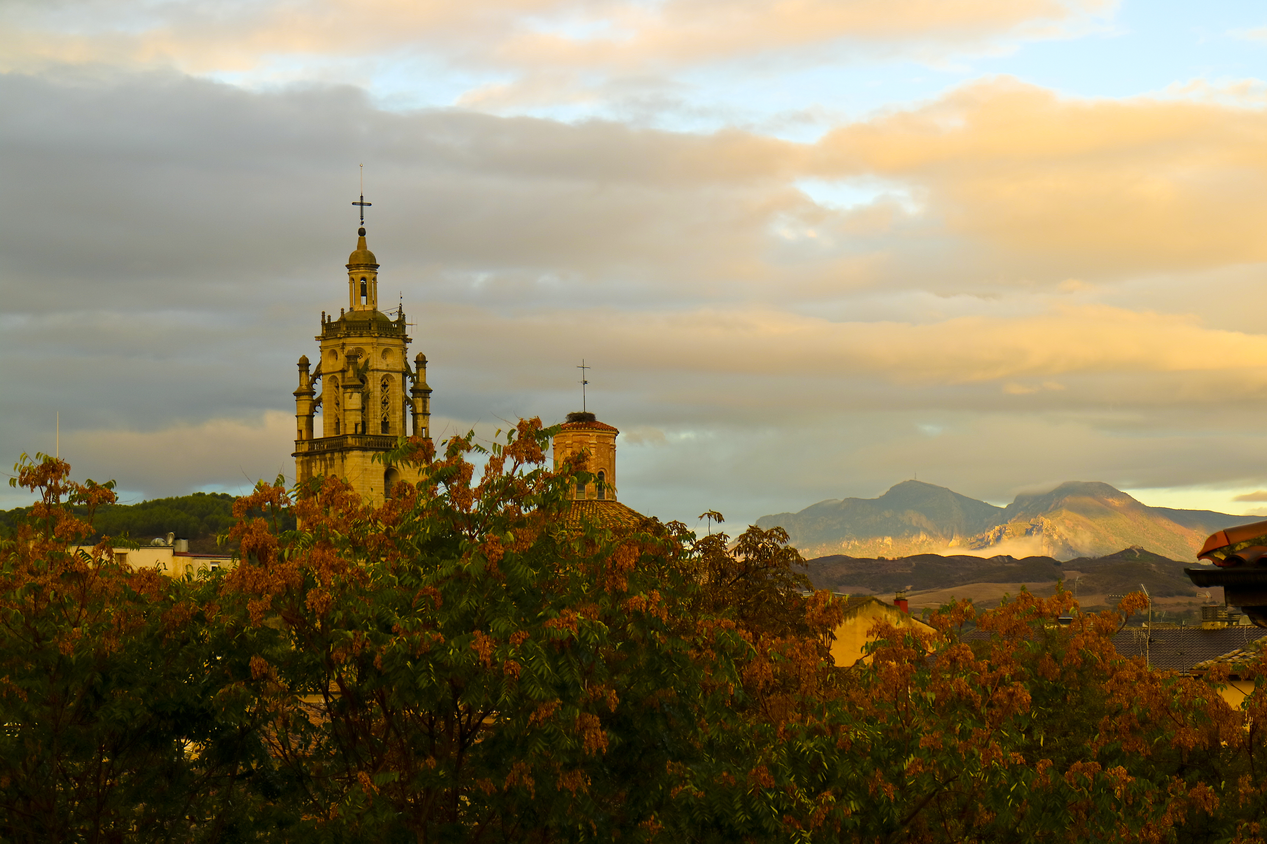 Carrion de los Condes, Sunset, Tower, Tree, Sky, HQ Photo