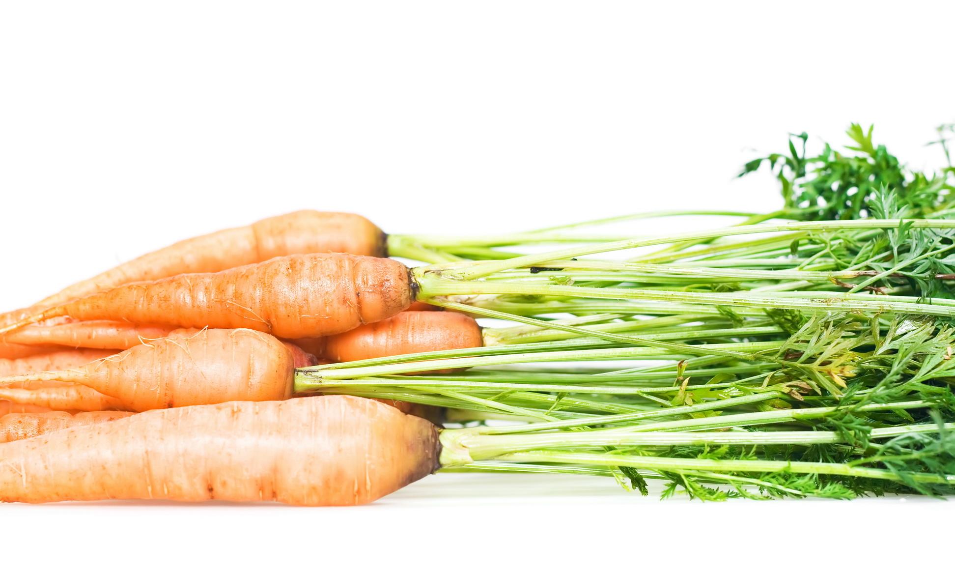 Carrot, Juicy, Refreshment, Raw, Organic, HQ Photo
