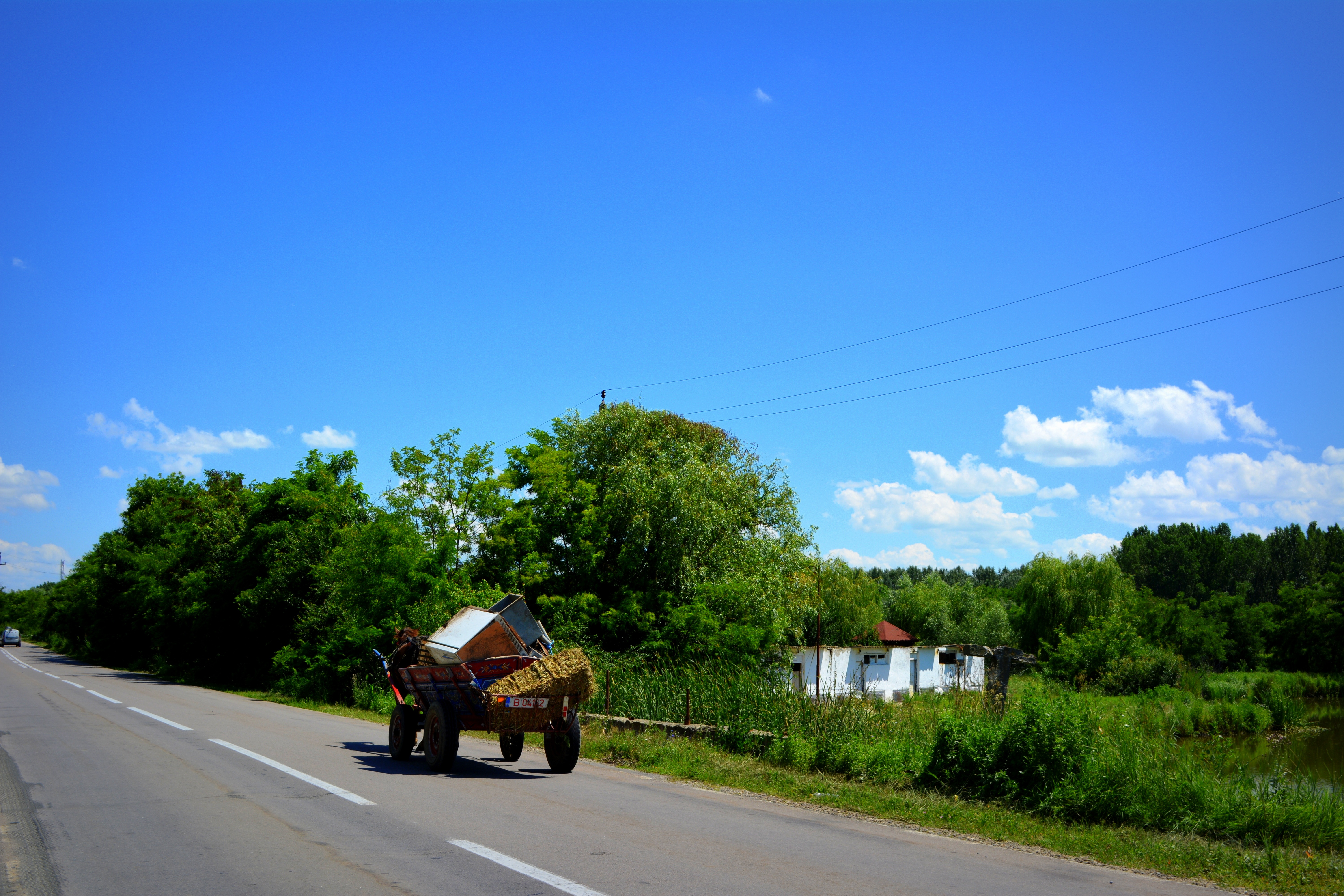 Cart, Highway, Path, Road, Route, HQ Photo
