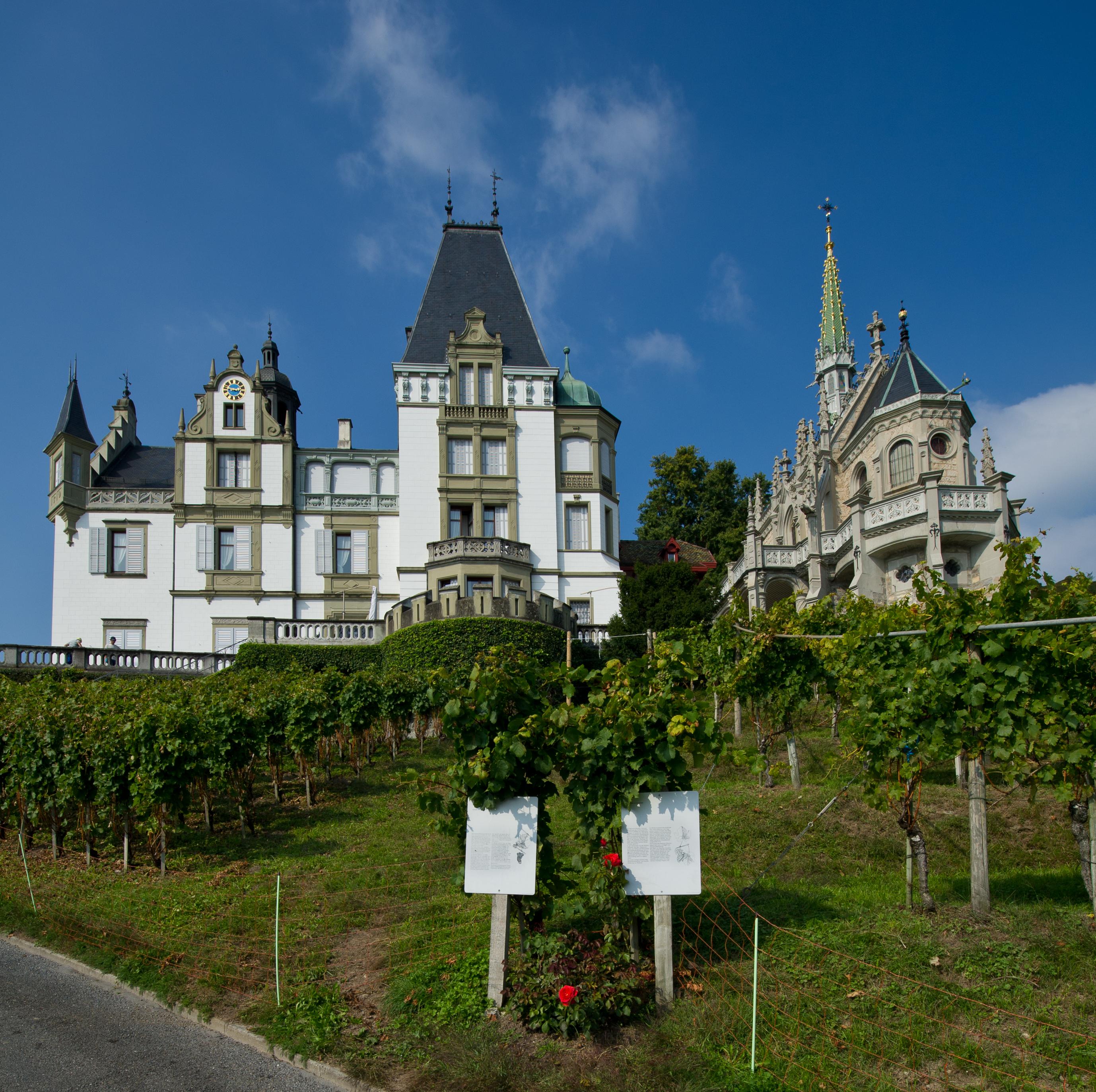 File:Luzern Meggen Schloss Meggenhorn.jpg - Wikimedia Commons