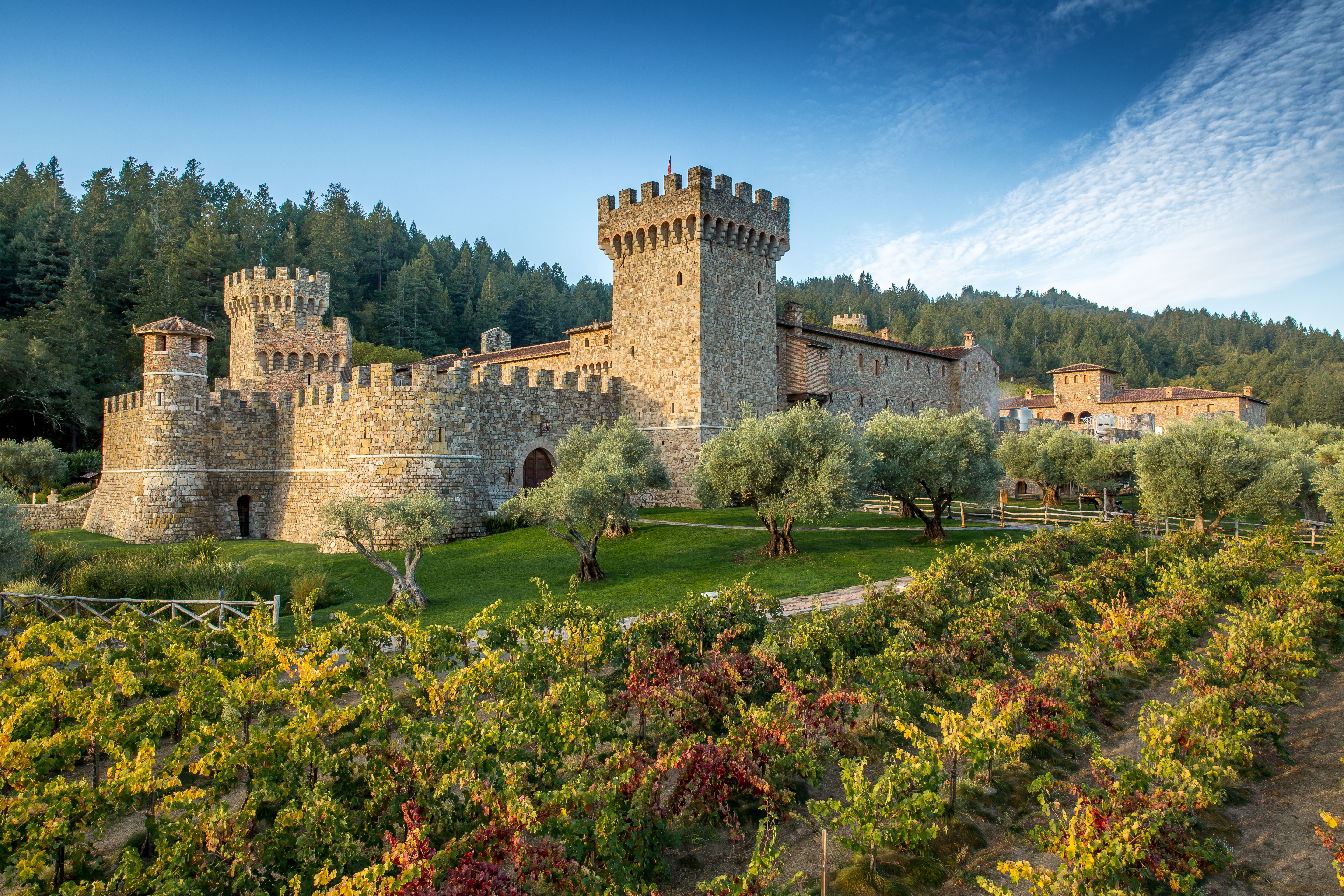 Castle winery photo