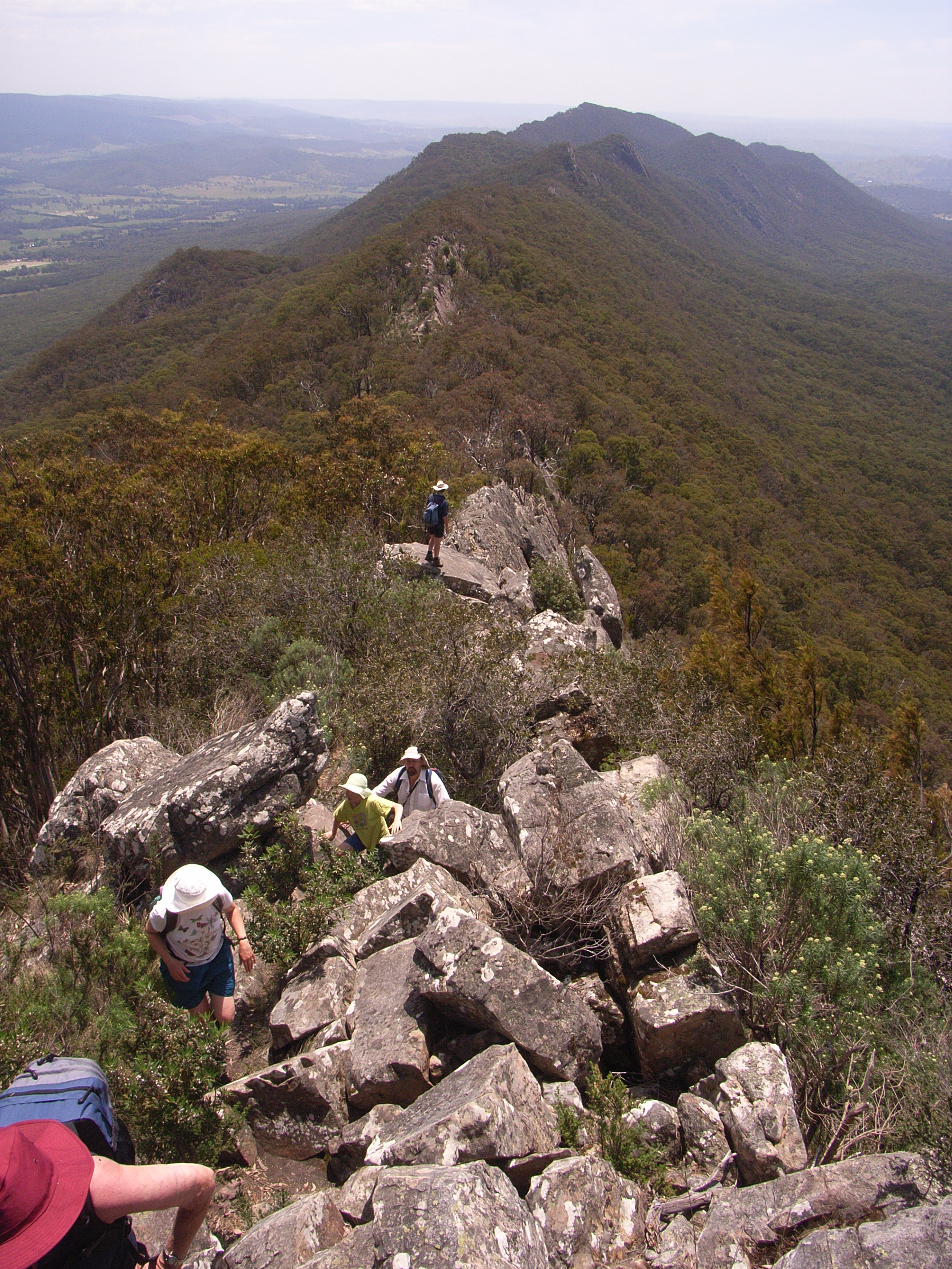 Catherdral range bushwalking photo