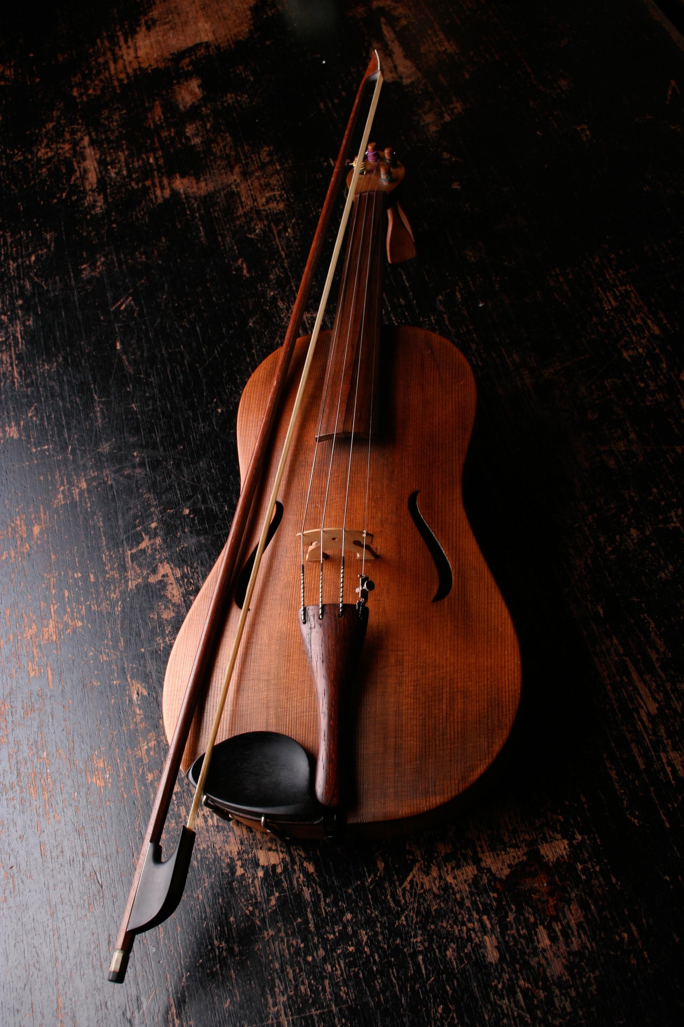 Cedar Top Violin · Free Stock Photo