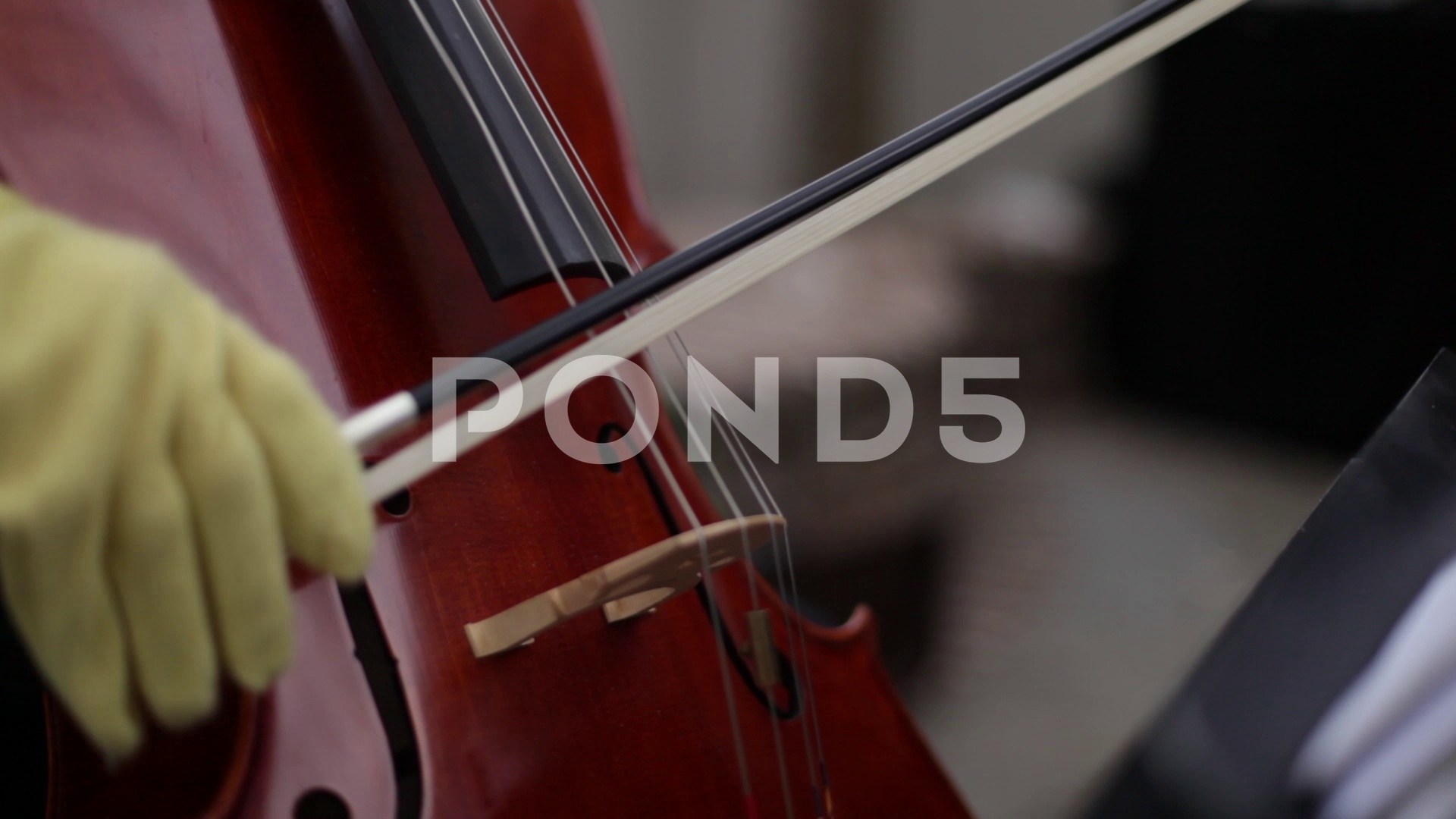 Cello Closeup ~ SD, HD, & 4K Stock Footage #71062863   Pond5