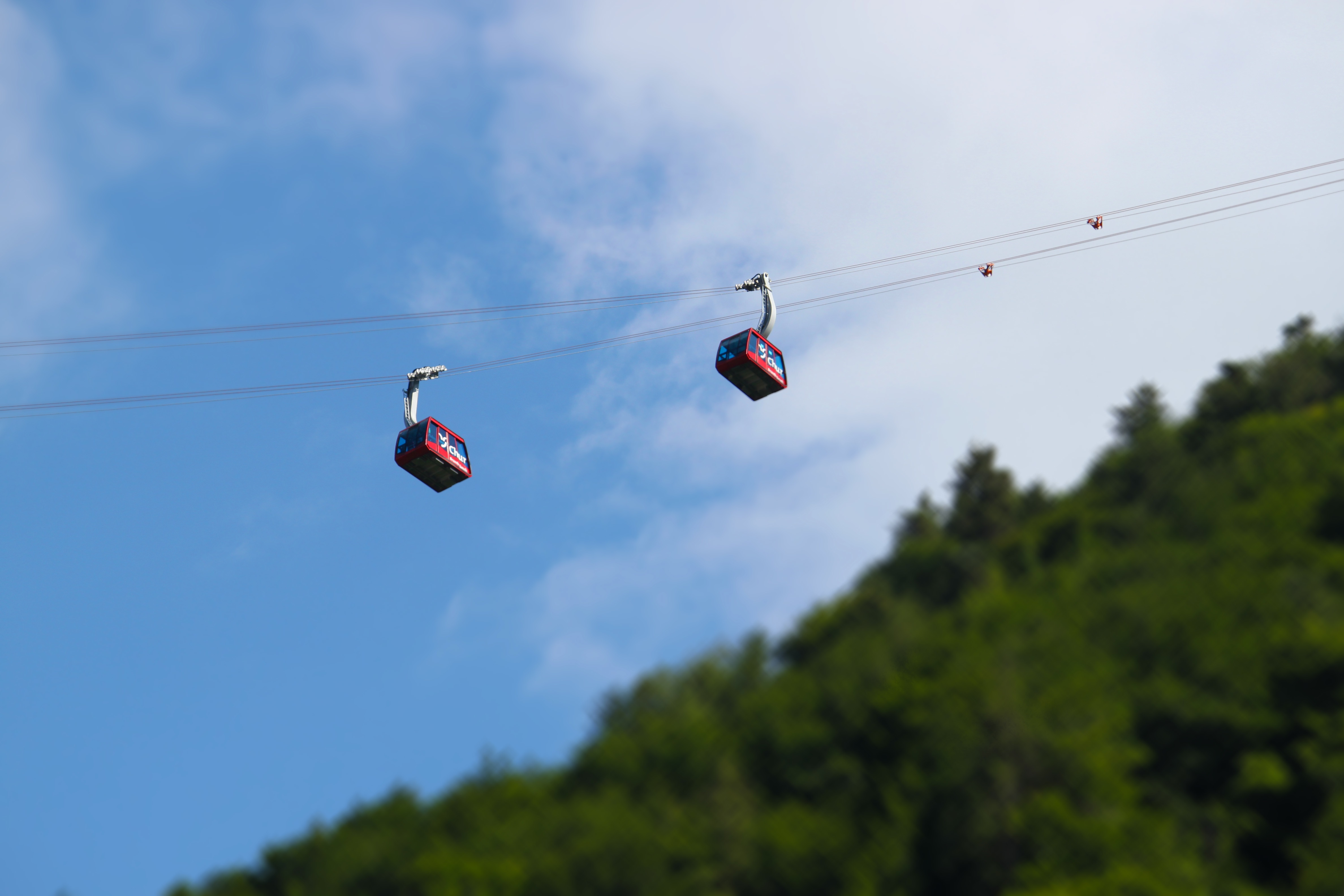 Chairlift, Above, Cable, Green, Joy, HQ Photo