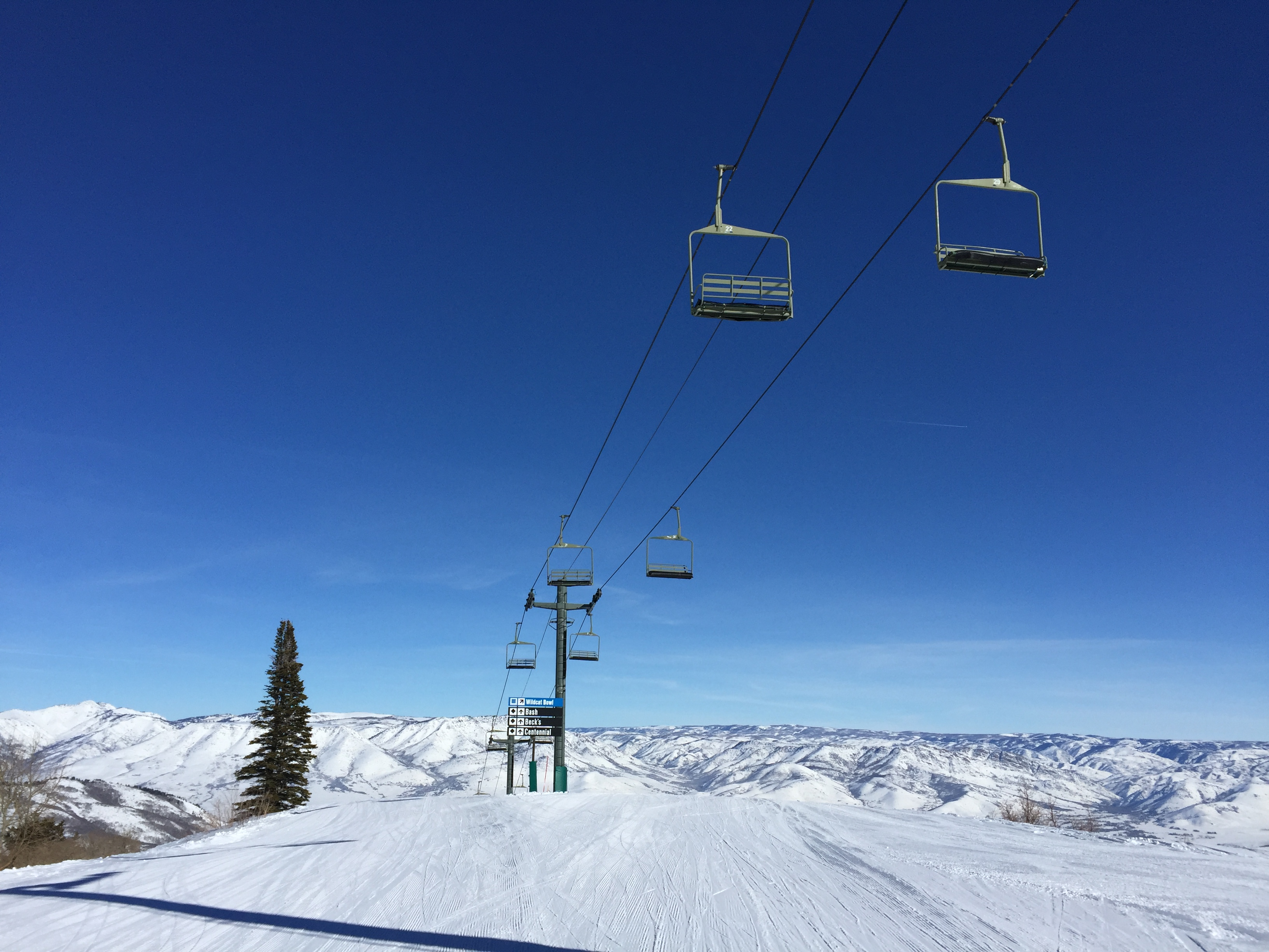 Snowbasin Resort Announces New High Speed Wildcat Chairlift for 2017 ...