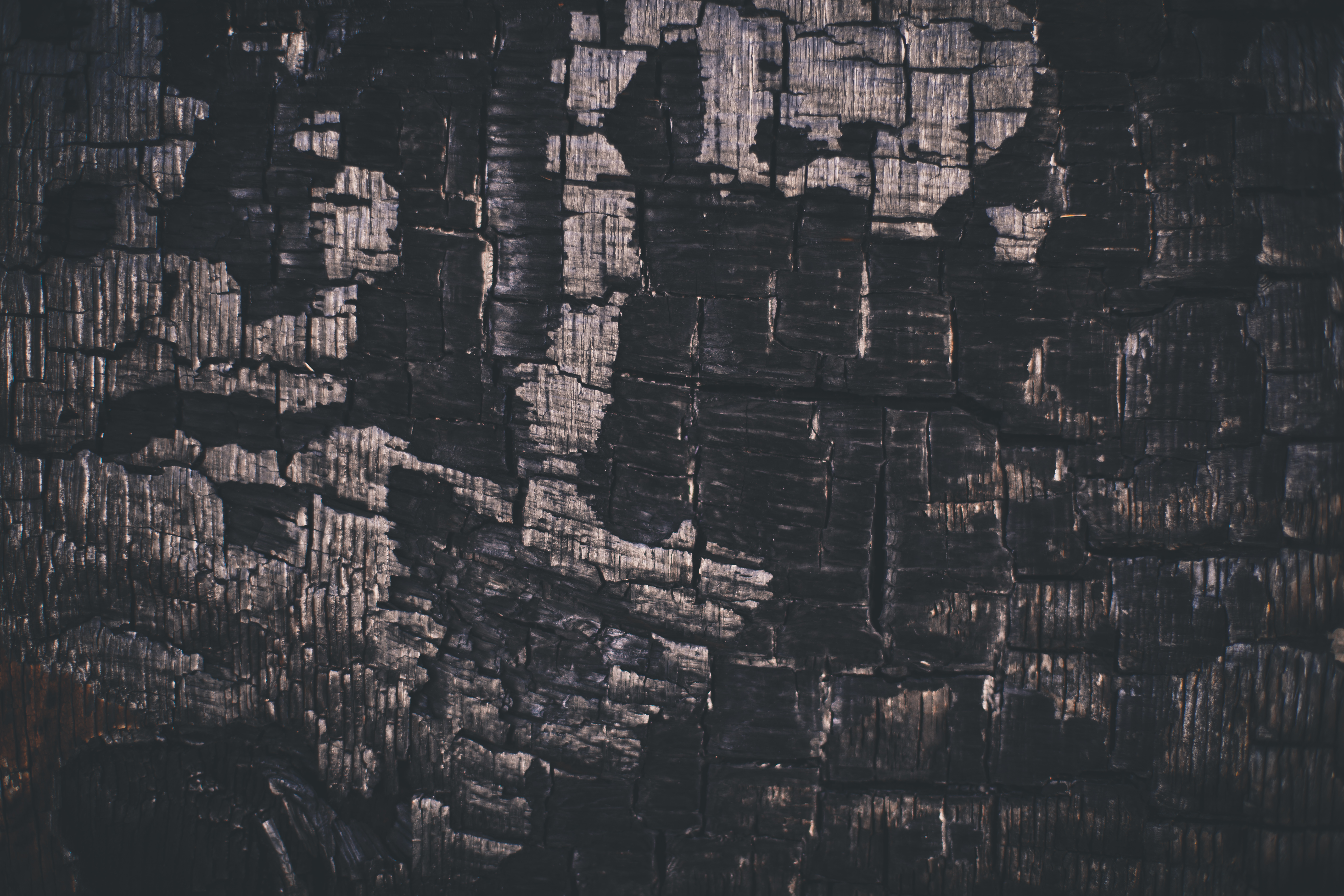 Charcoaled Wood Background, Black, Burn, Burned, Charcoal, HQ Photo