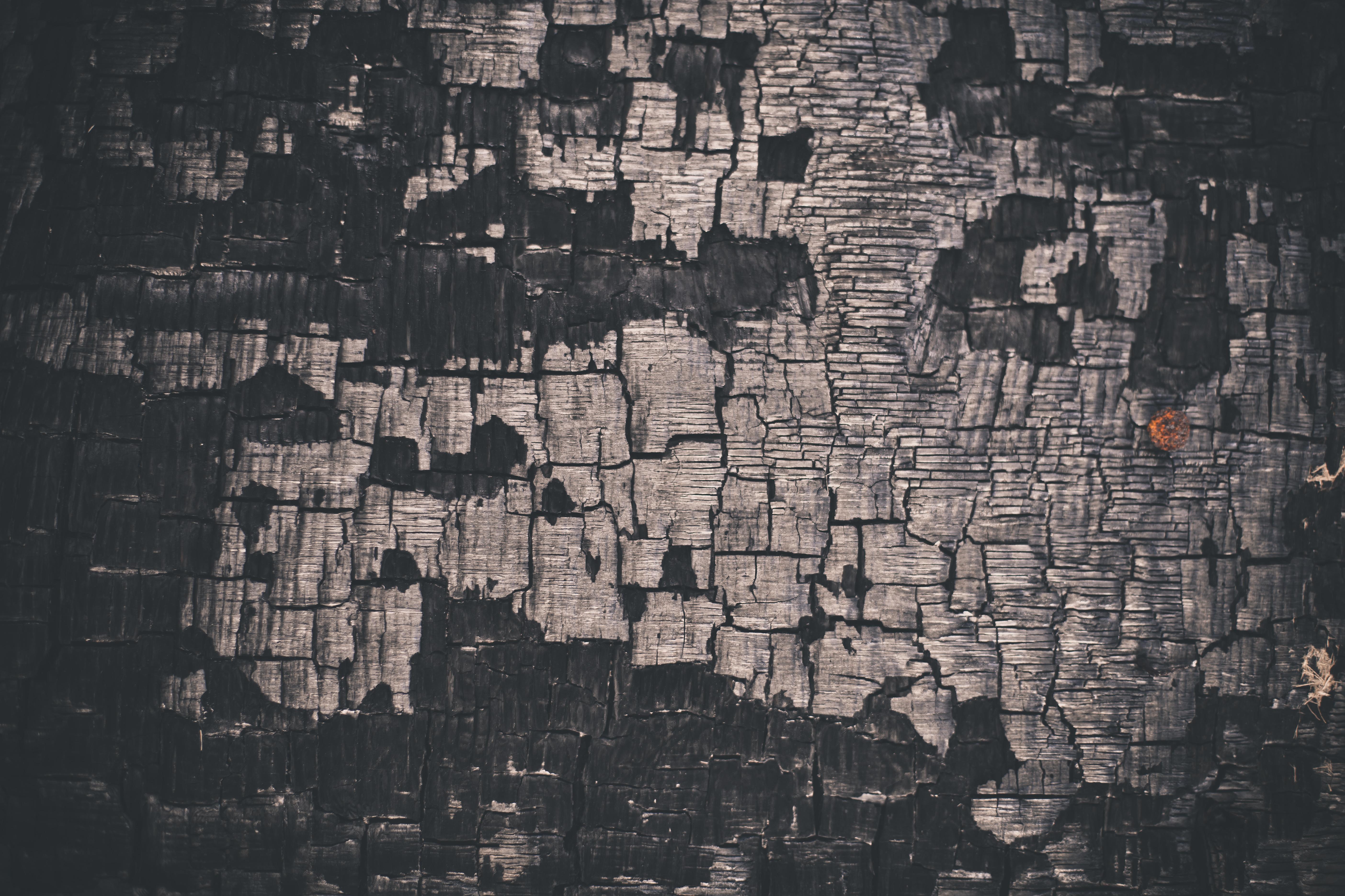 Char-coaled Wood Texture