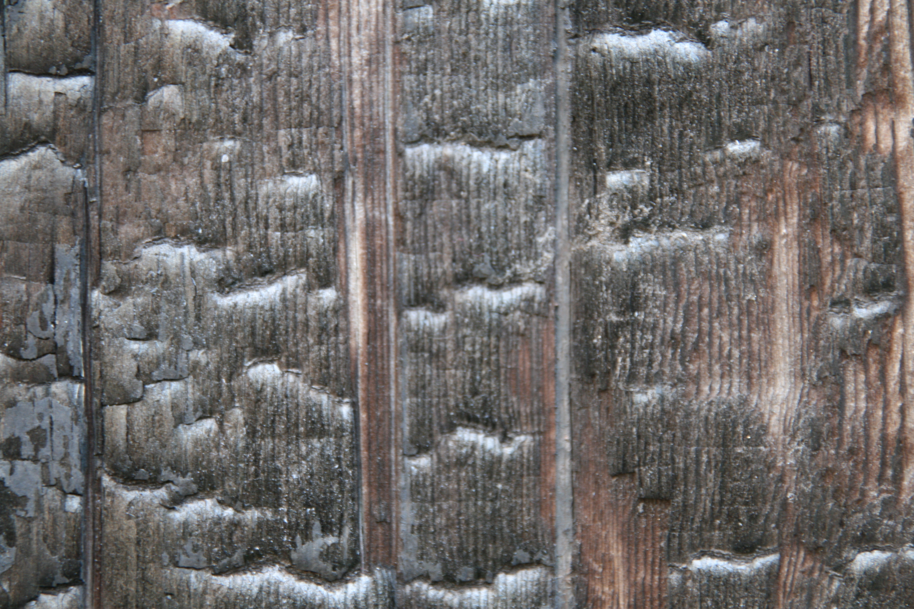 High Quality Charcoaled Wood Textures - Burned Wood Textures | High ...