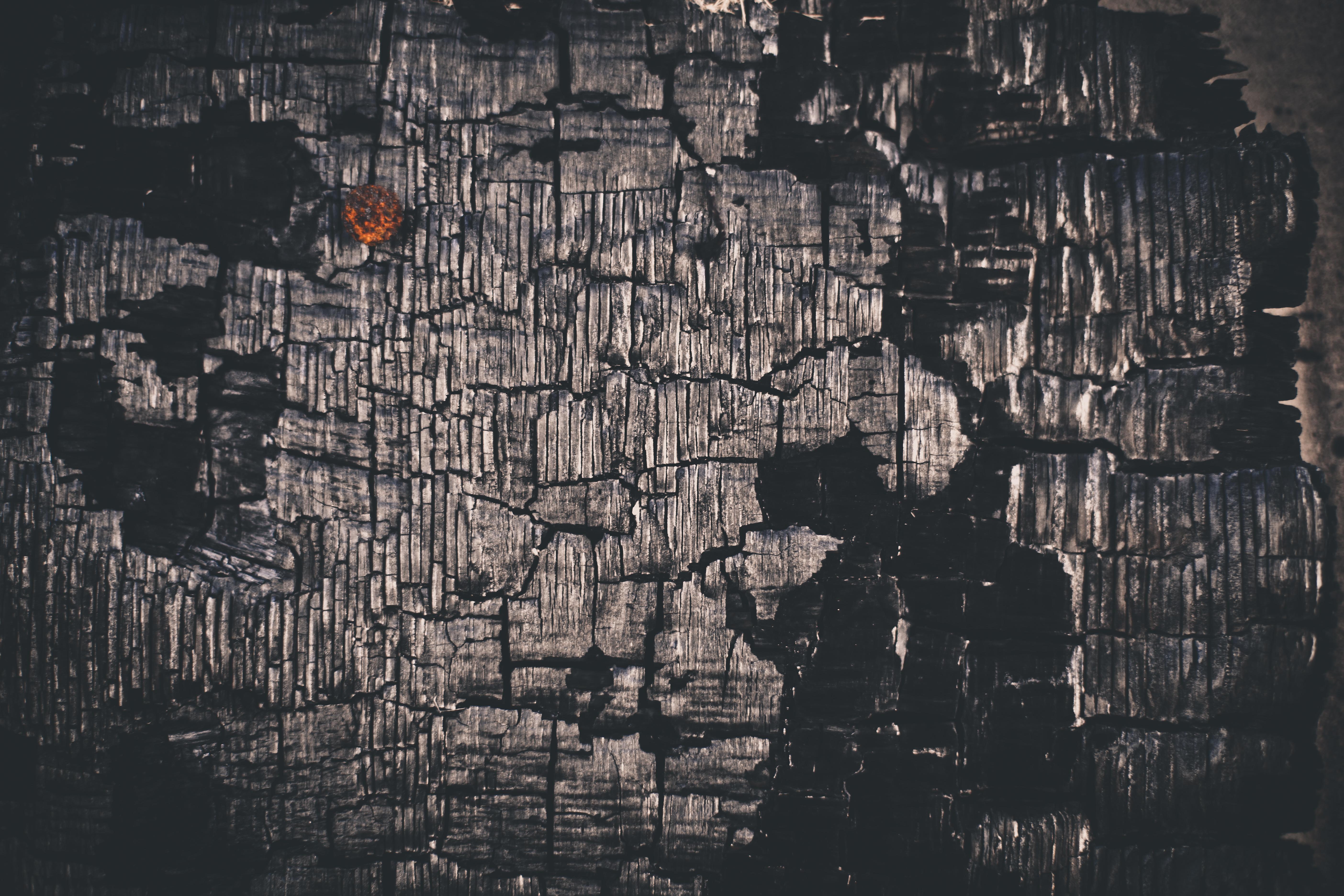 Charcoaled Wood Texture, Black, Burn, Burned, Charcoal, HQ Photo