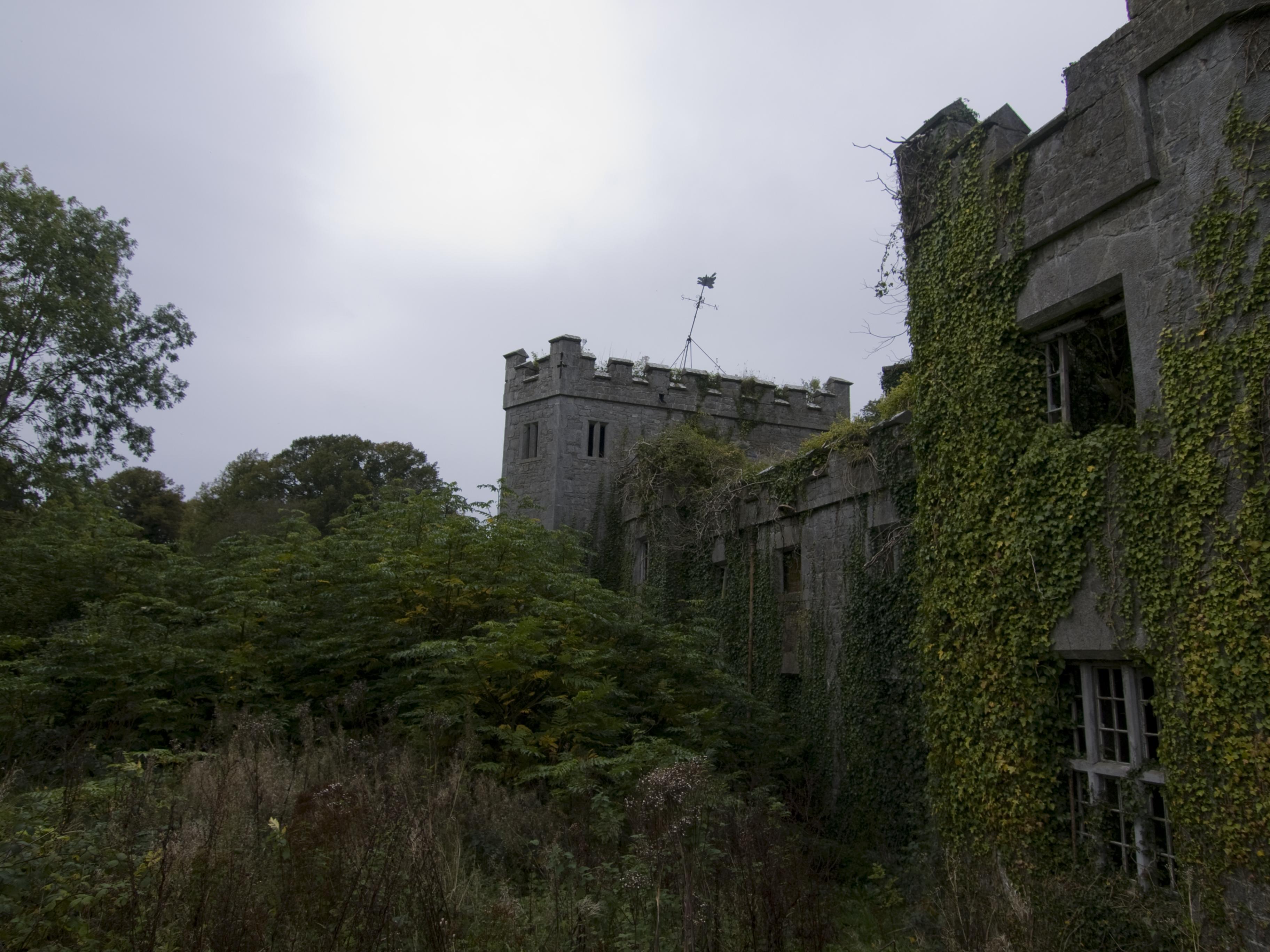 Charleville castle stables, Architecture, Castle, Cliff, Crag, HQ Photo