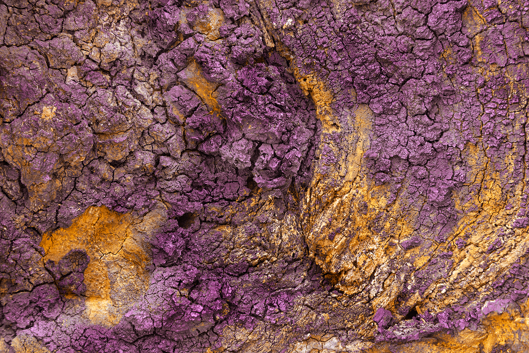 Charred Wood Texture - Purple Gold HDR, Backdrop, Lines, Raw, Range, HQ Photo