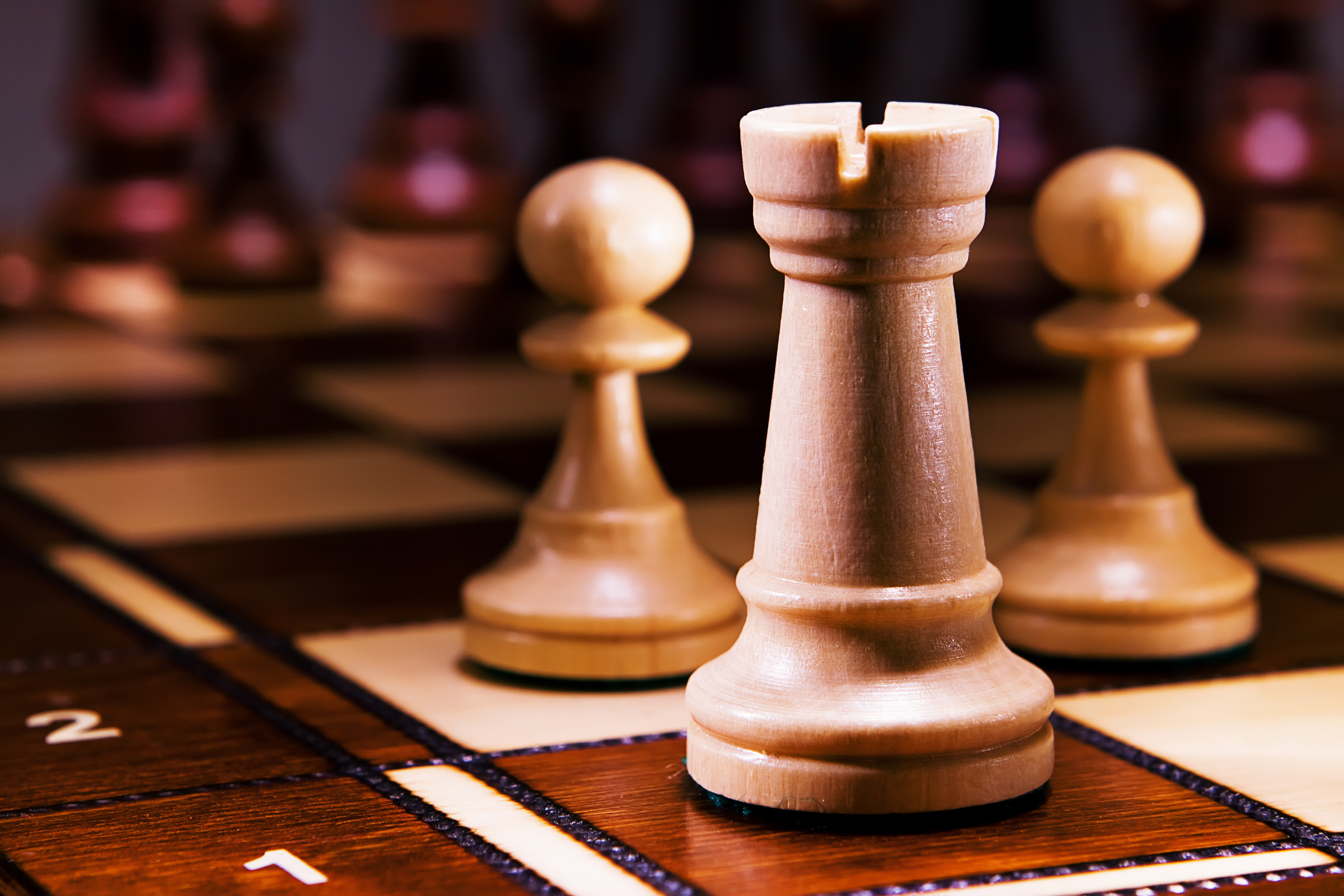 chess, Challenge, One, Tactical, Strategy, HQ Photo