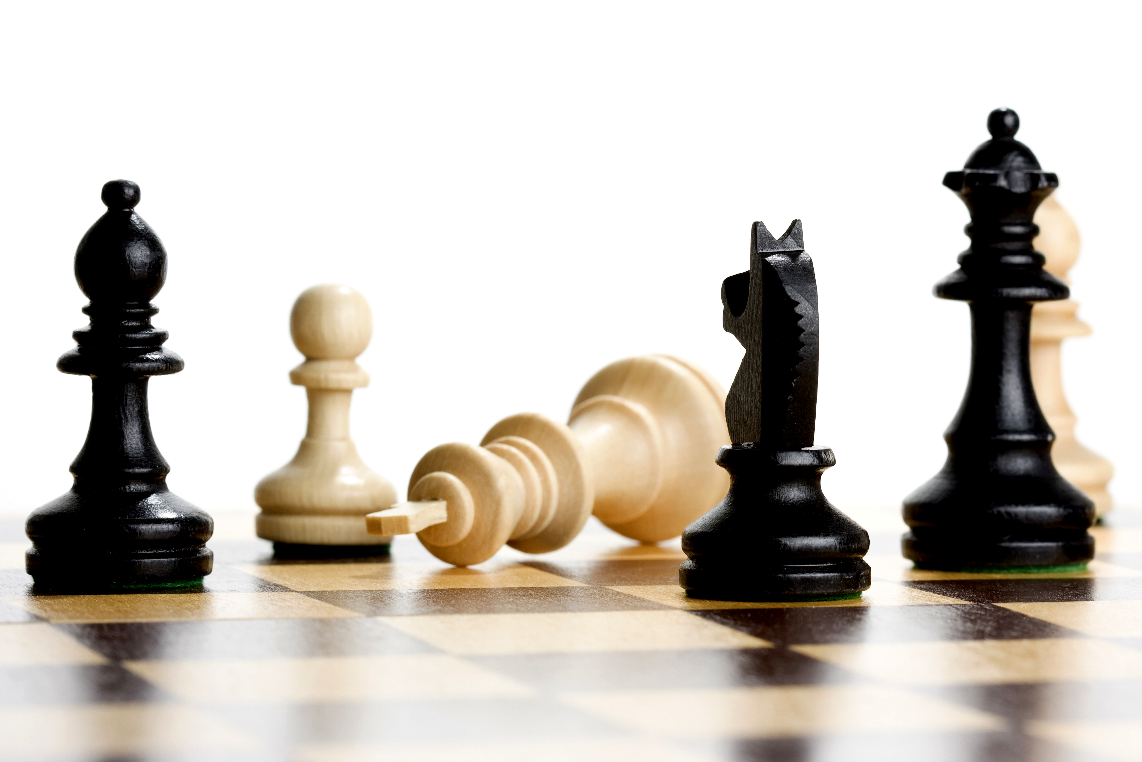All Ages Chess Ninja Camp | Chattanooga Public Library