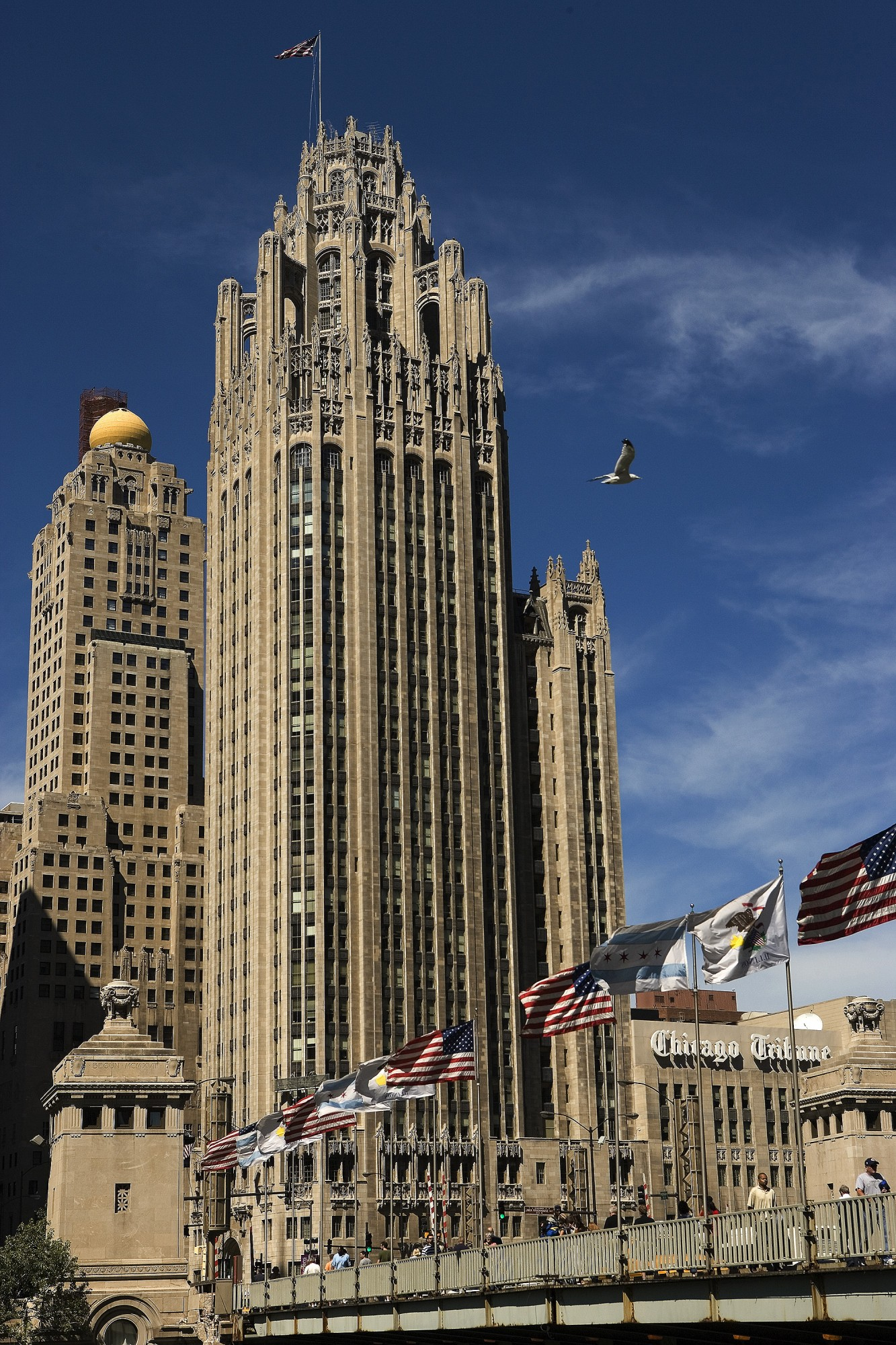 Tribune Tower · Buildings of Chicago · Chicago Architecture ...