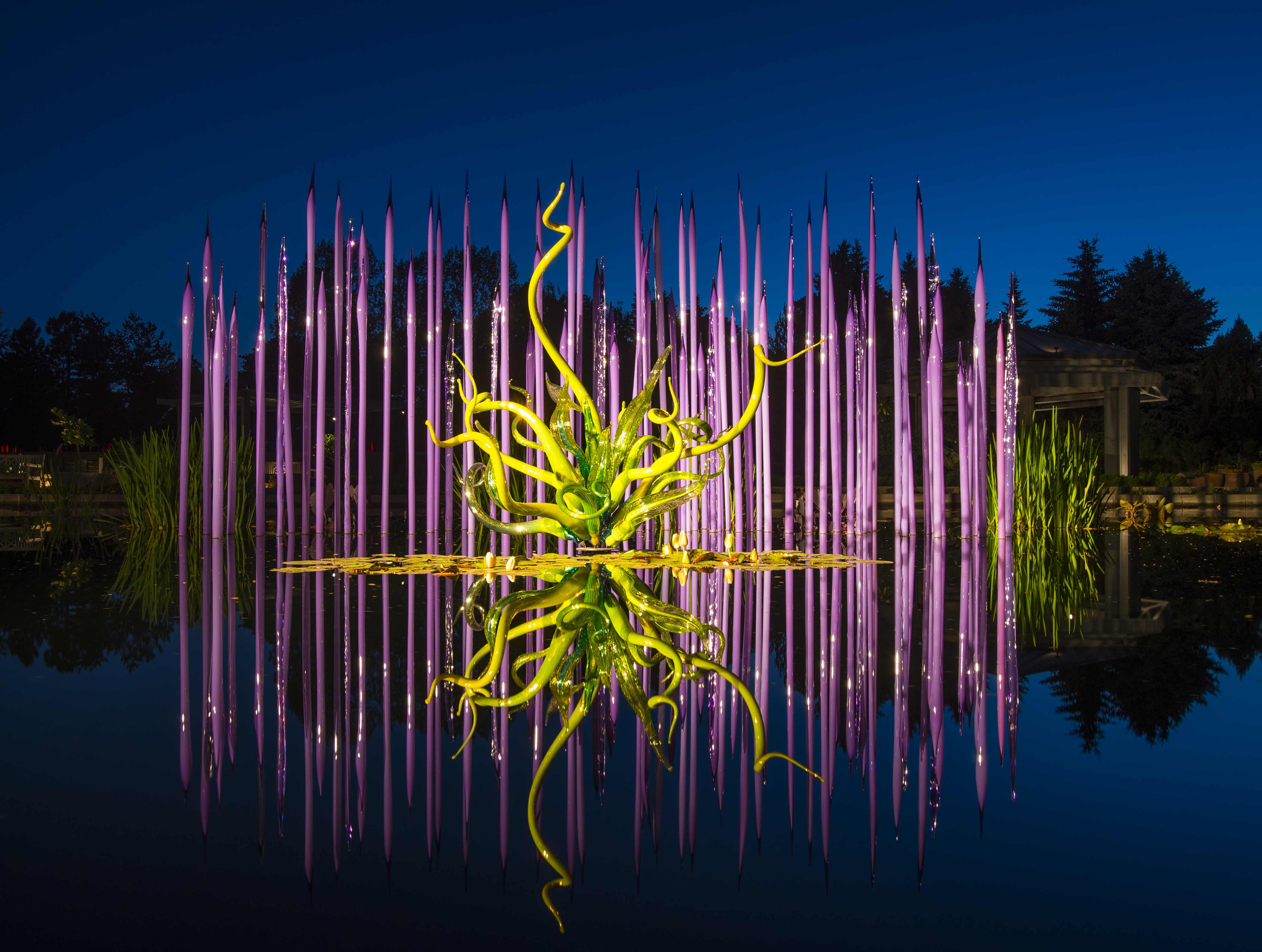 Chihuly exhibit photo
