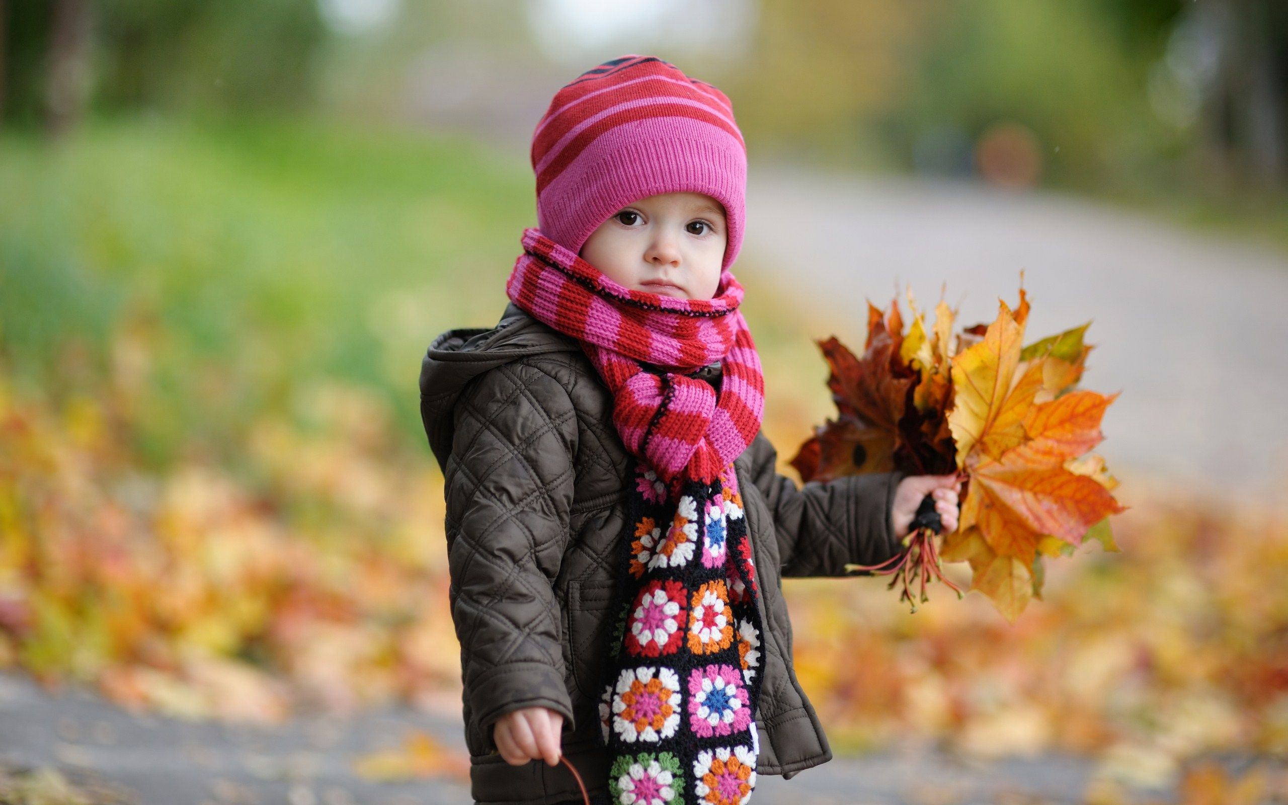 View Sweet Little Girl Child Autumn Leaves Photo HD Wallpaper *melts ...