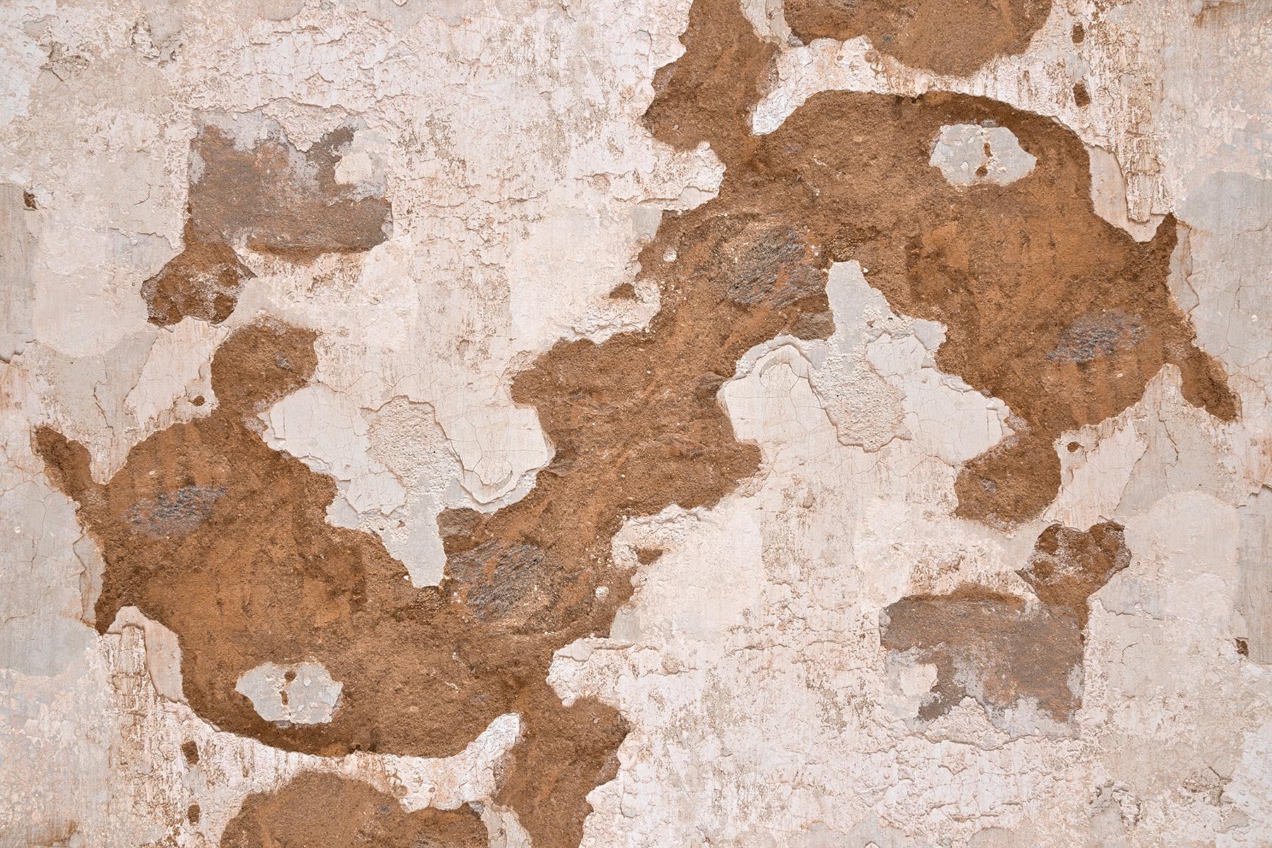 Chimera grunge wall - hdr texture photo