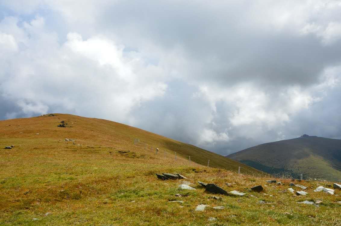 China's Grasslands, China, Grasslands, Landscape, Mountains, HQ Photo