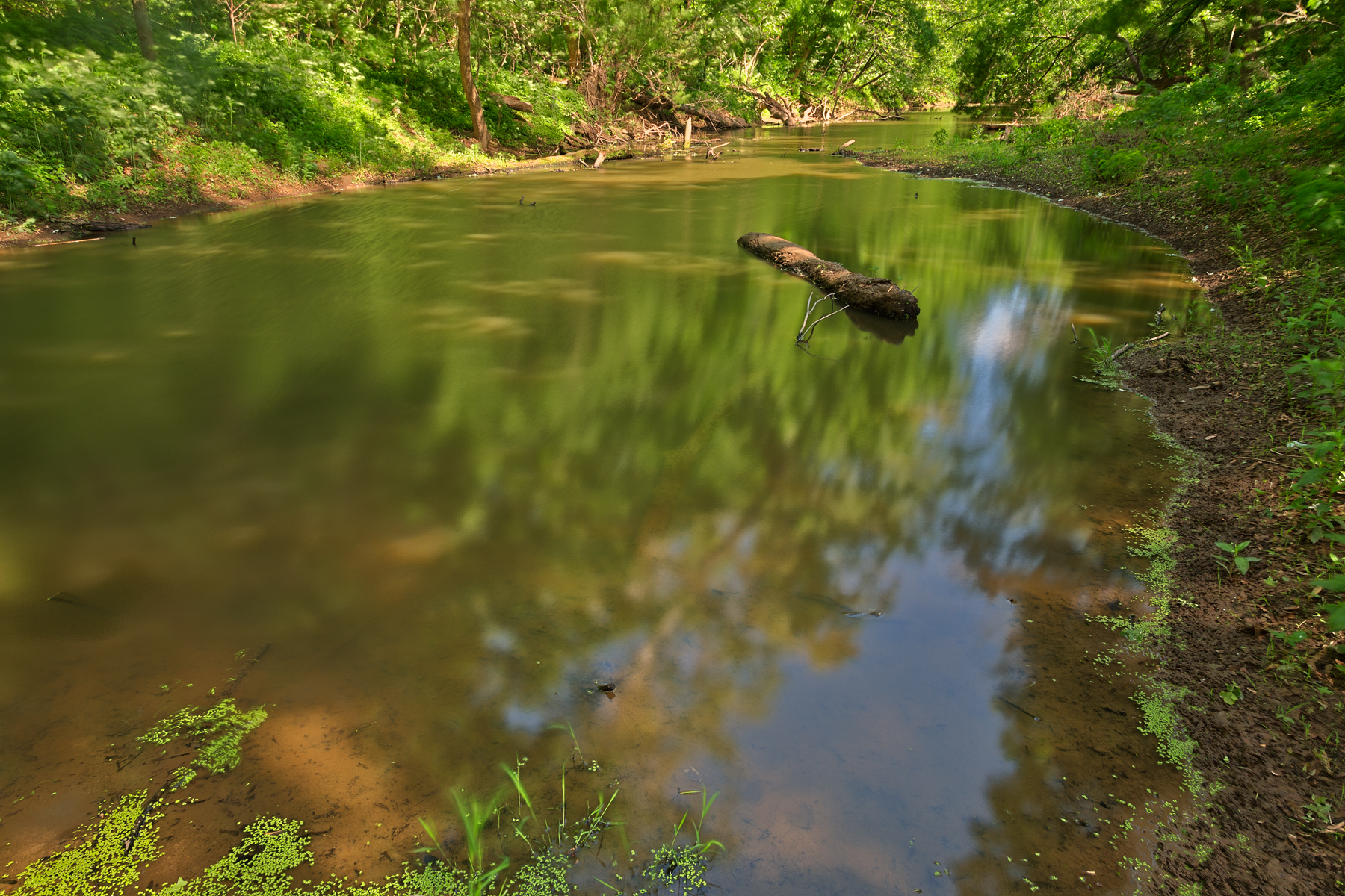 Chisel branch creek - hdr photo