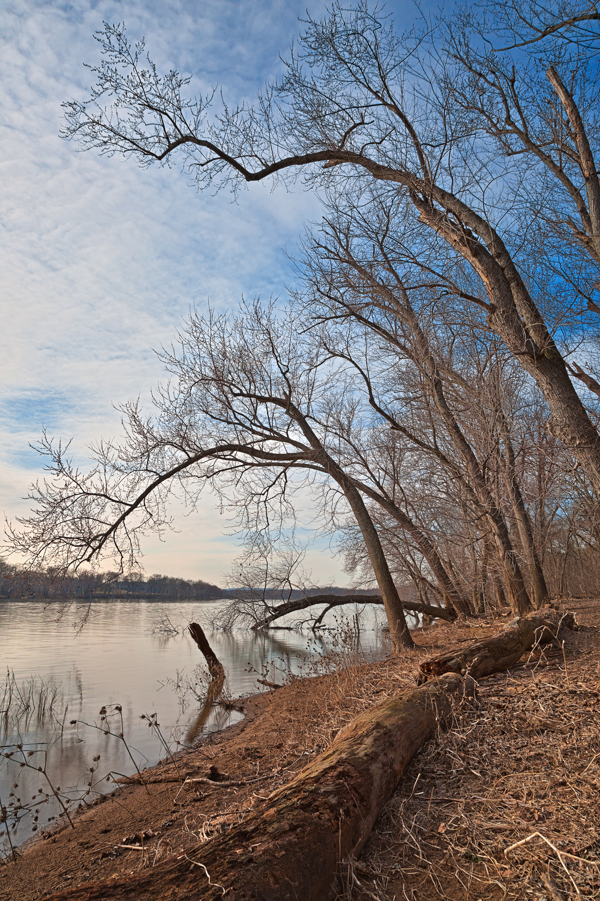 Chisel Branch River Shore - HDR, America, Reflective, Shadows, Shadow, HQ Photo