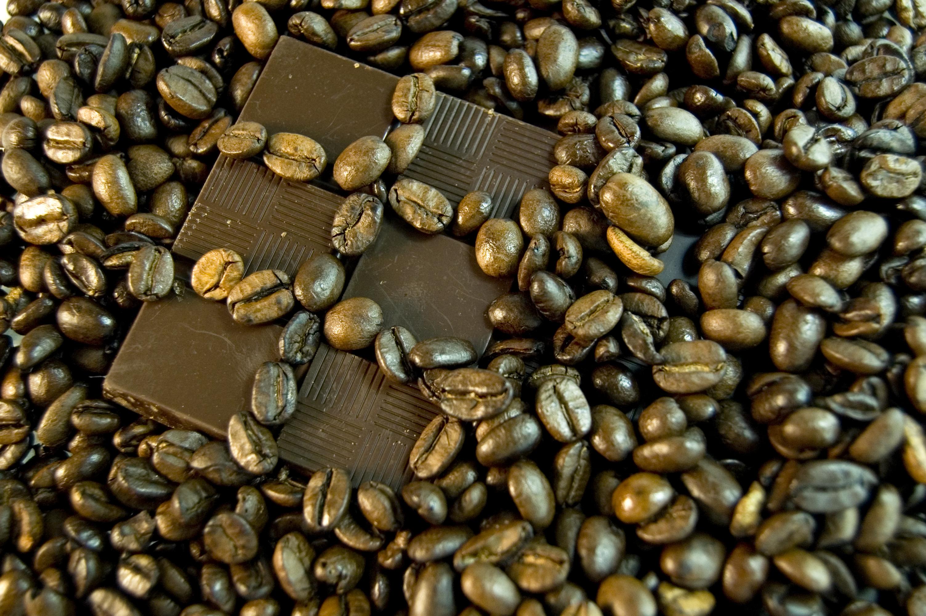 Chocolate and coffee photo