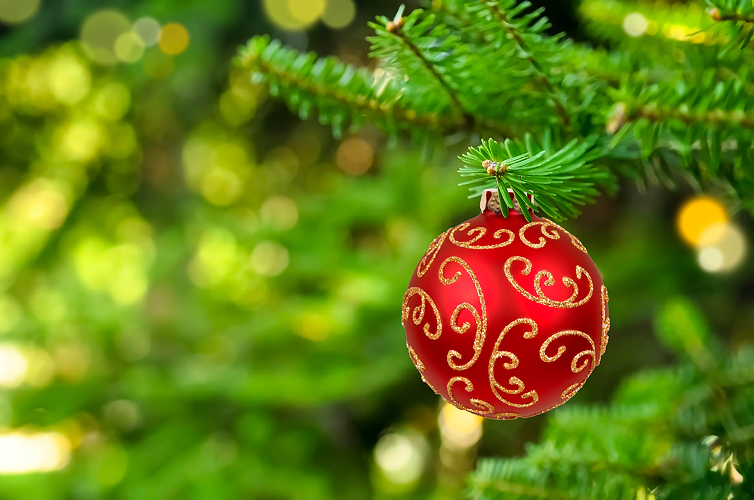 Why Christmas Colors Are Green and Red | Reader's Digest