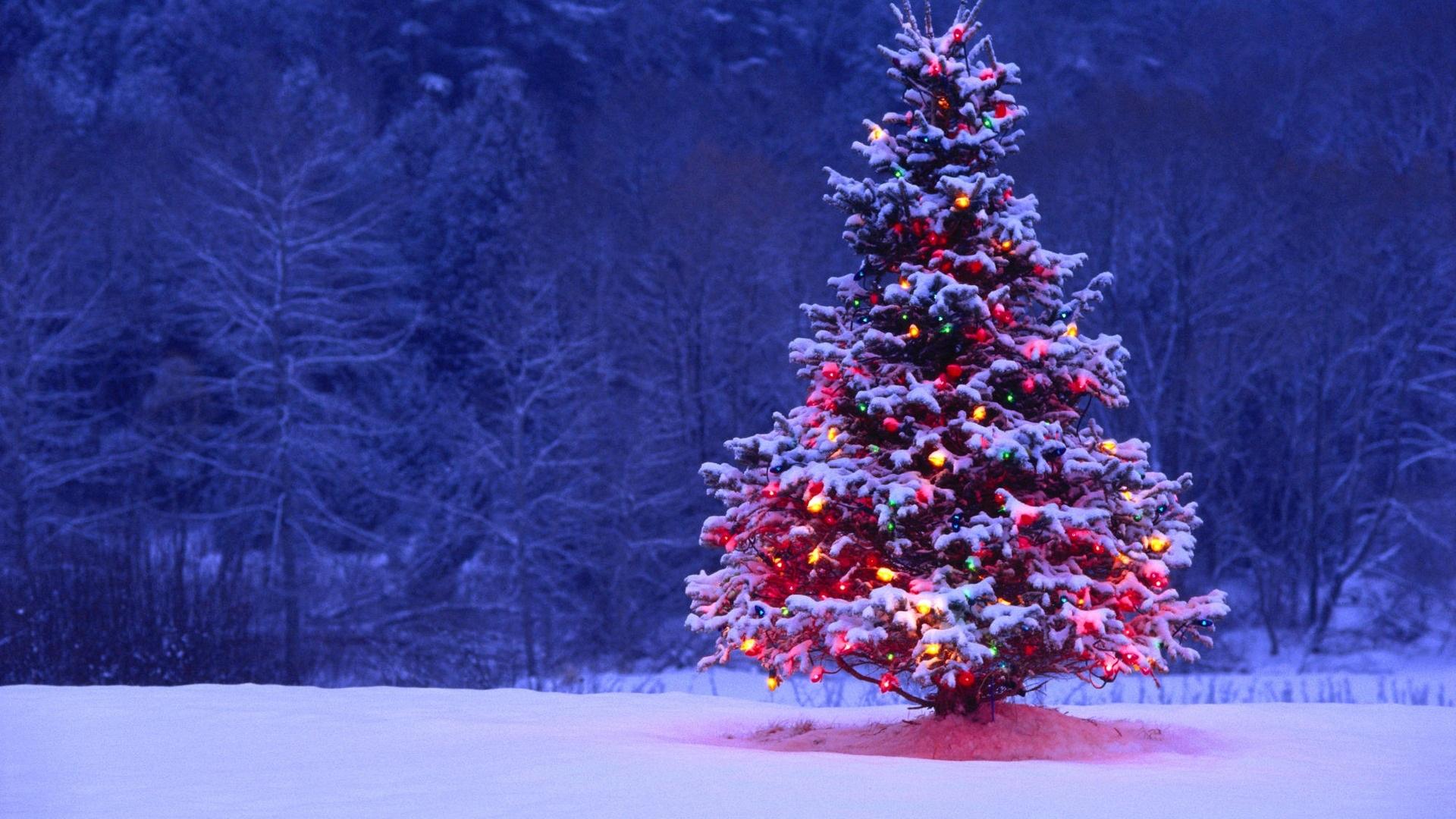 Christmas Skiing in St Anton with Kaluma Travel