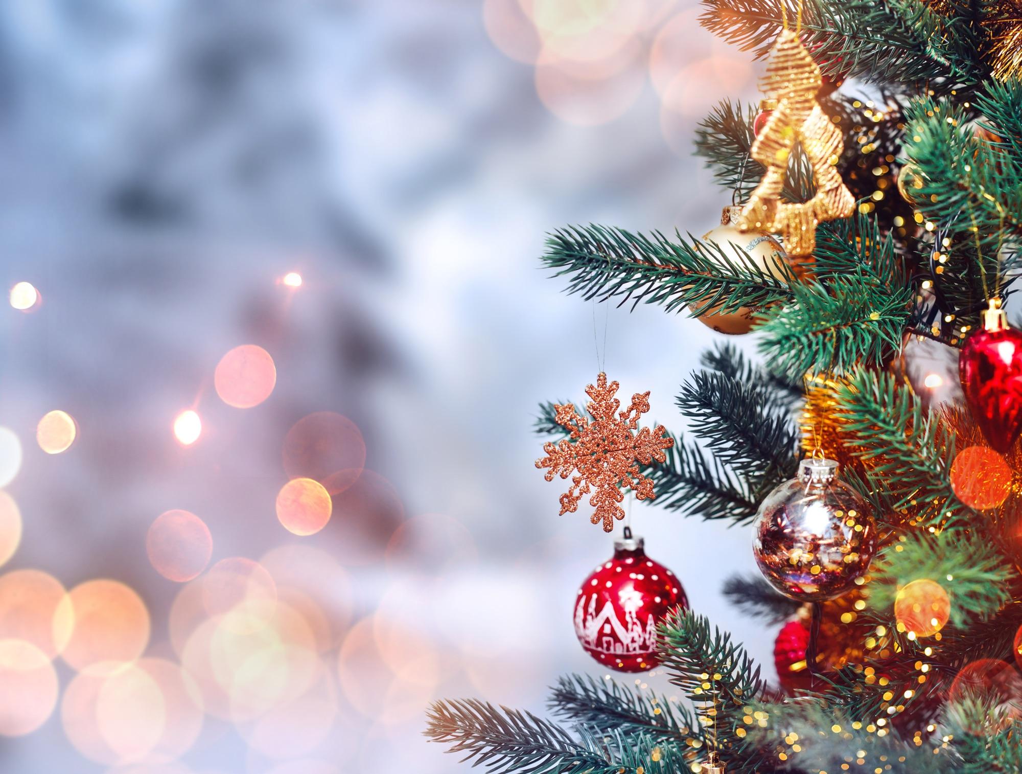 Christmas Tree Sale - Bel Air Lions Club
