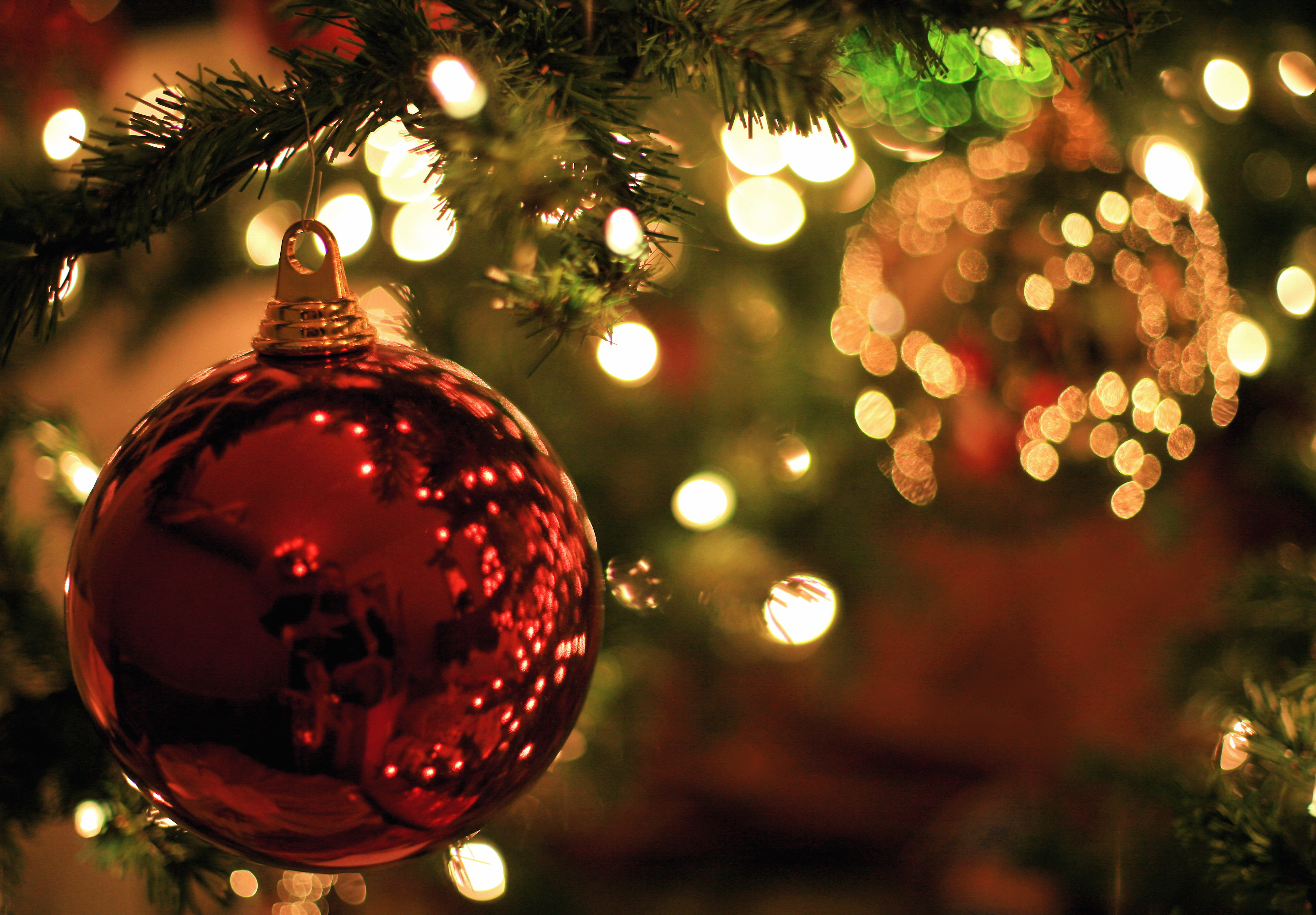 Christmas on the Farm - Freeport News Network