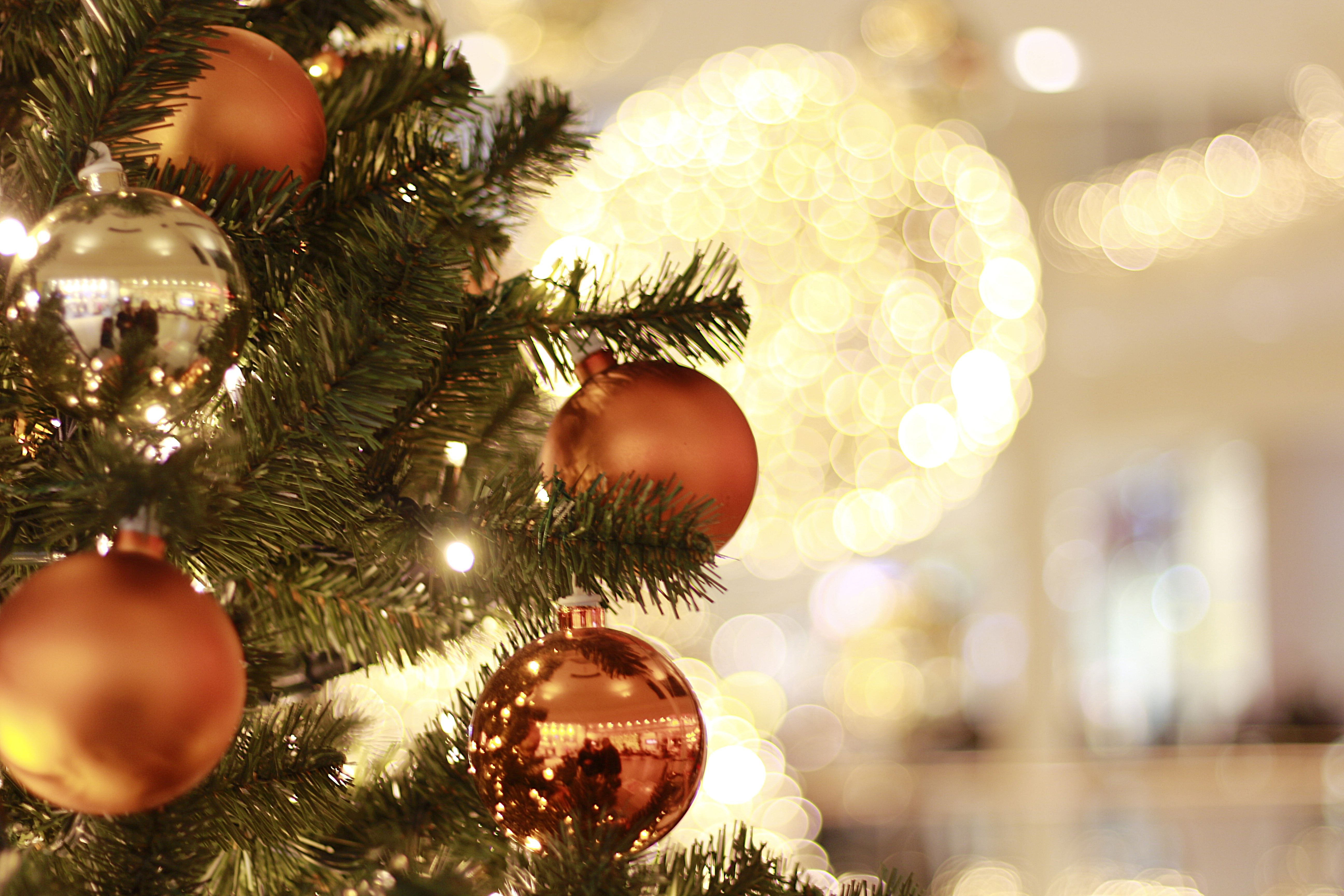 A Guide to Putting up Your Christmas Tree