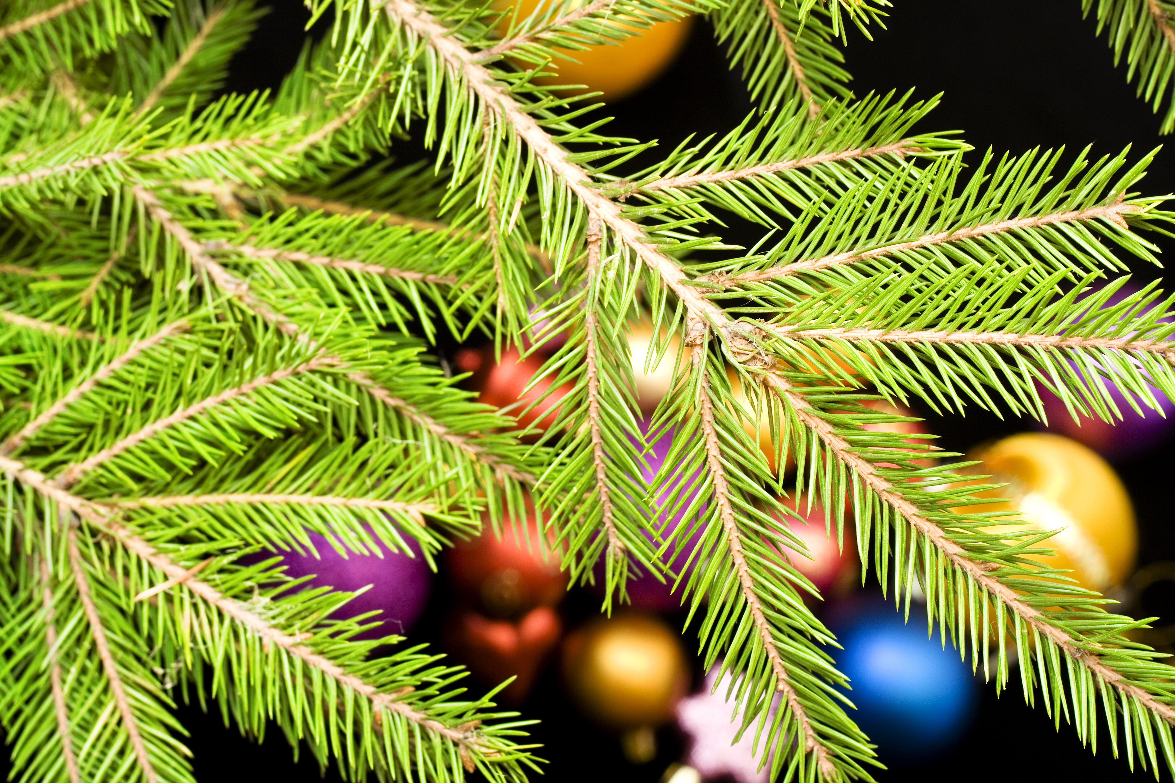 christmas balls, Ball, Group, White, Vibrant, HQ Photo