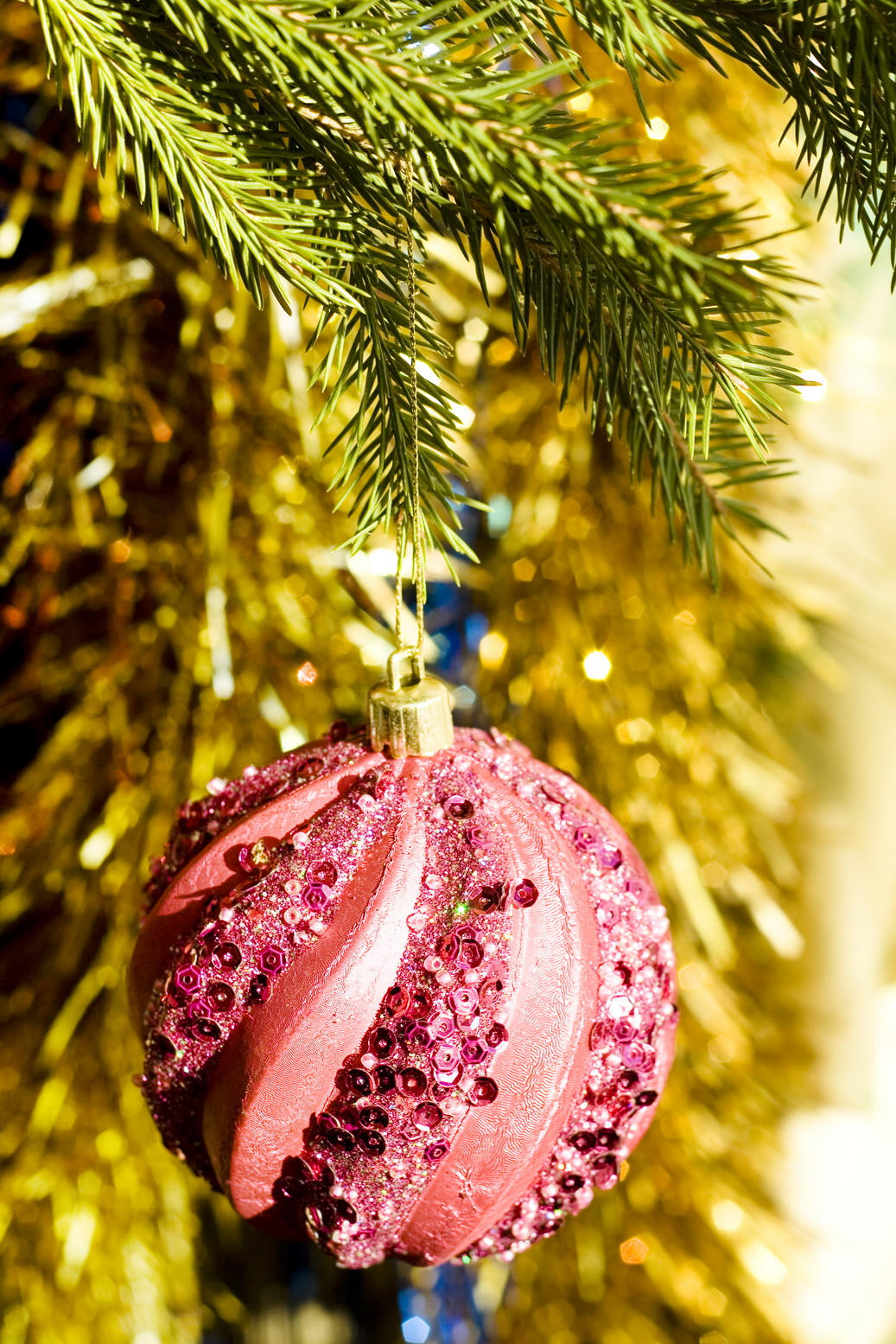 christmas bauble, Ball, Gold, Vibrant, Tree, HQ Photo