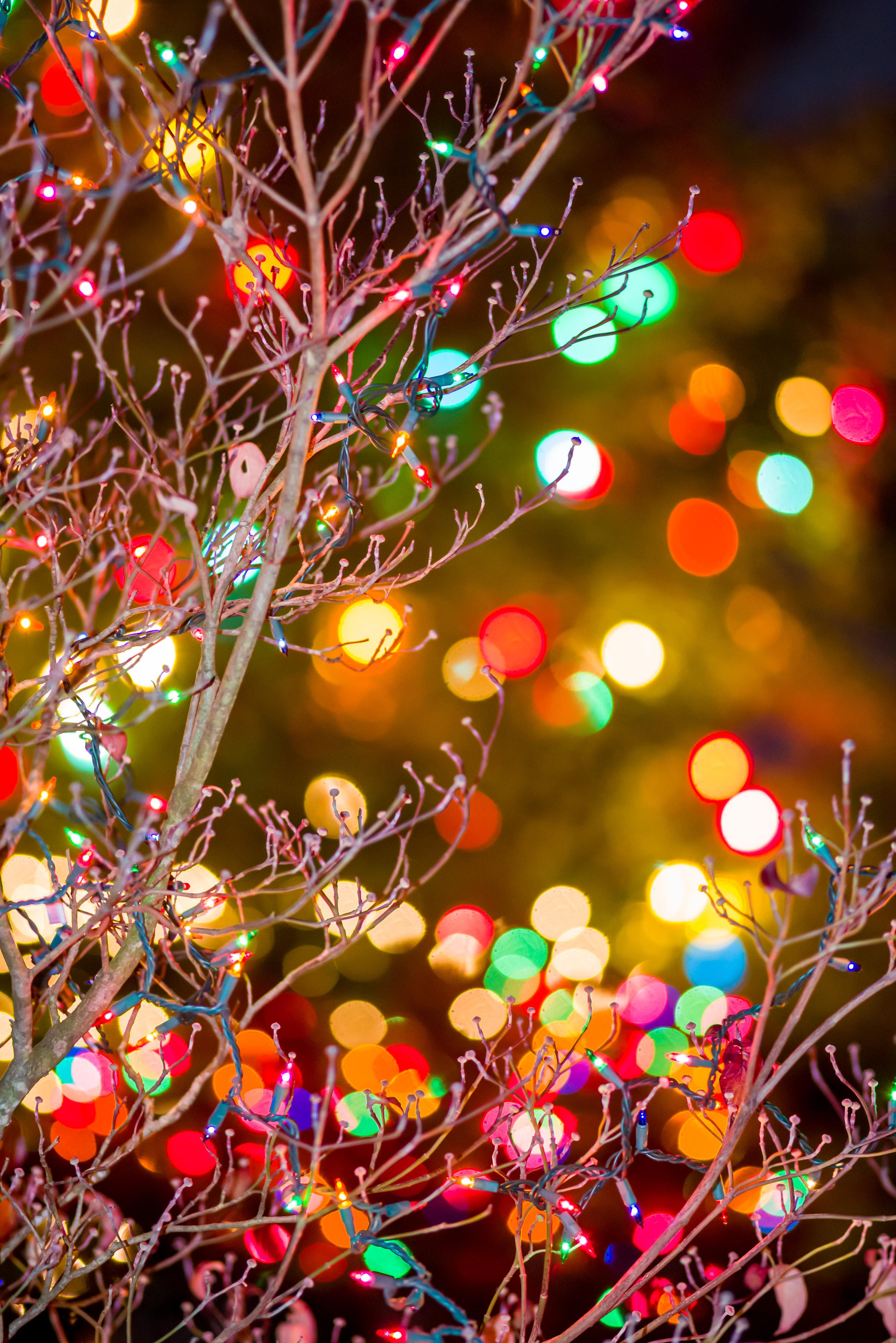 How to photograph Christmas lights! |