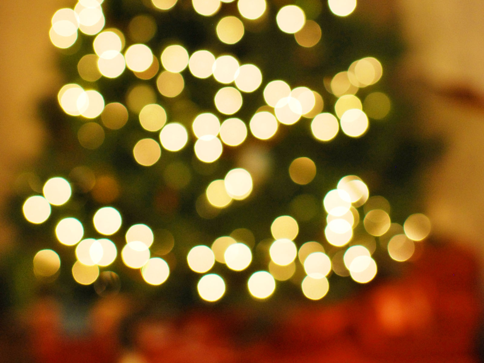 Christmas Tree Bokeh HD Wallpaper, Background Images