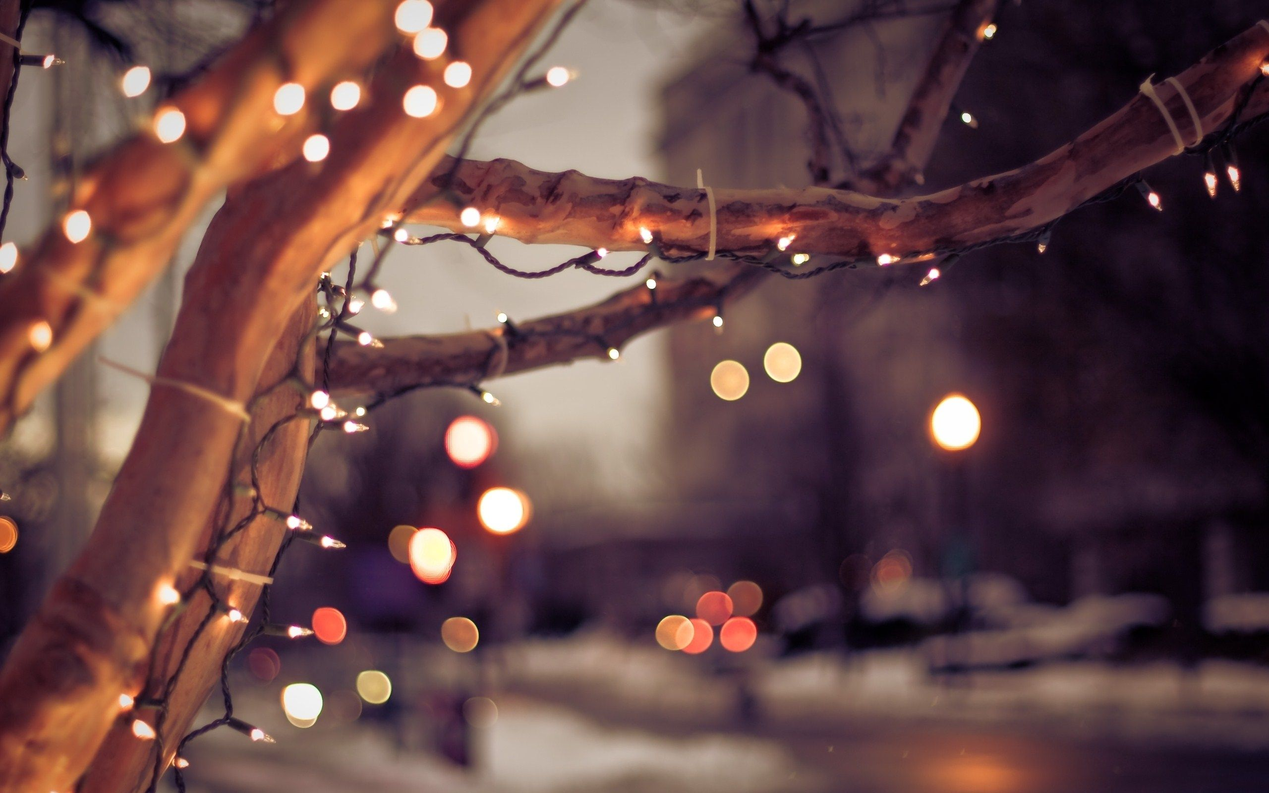 new year city winter tree lights christmas bokeh | Beautiful Pics ...