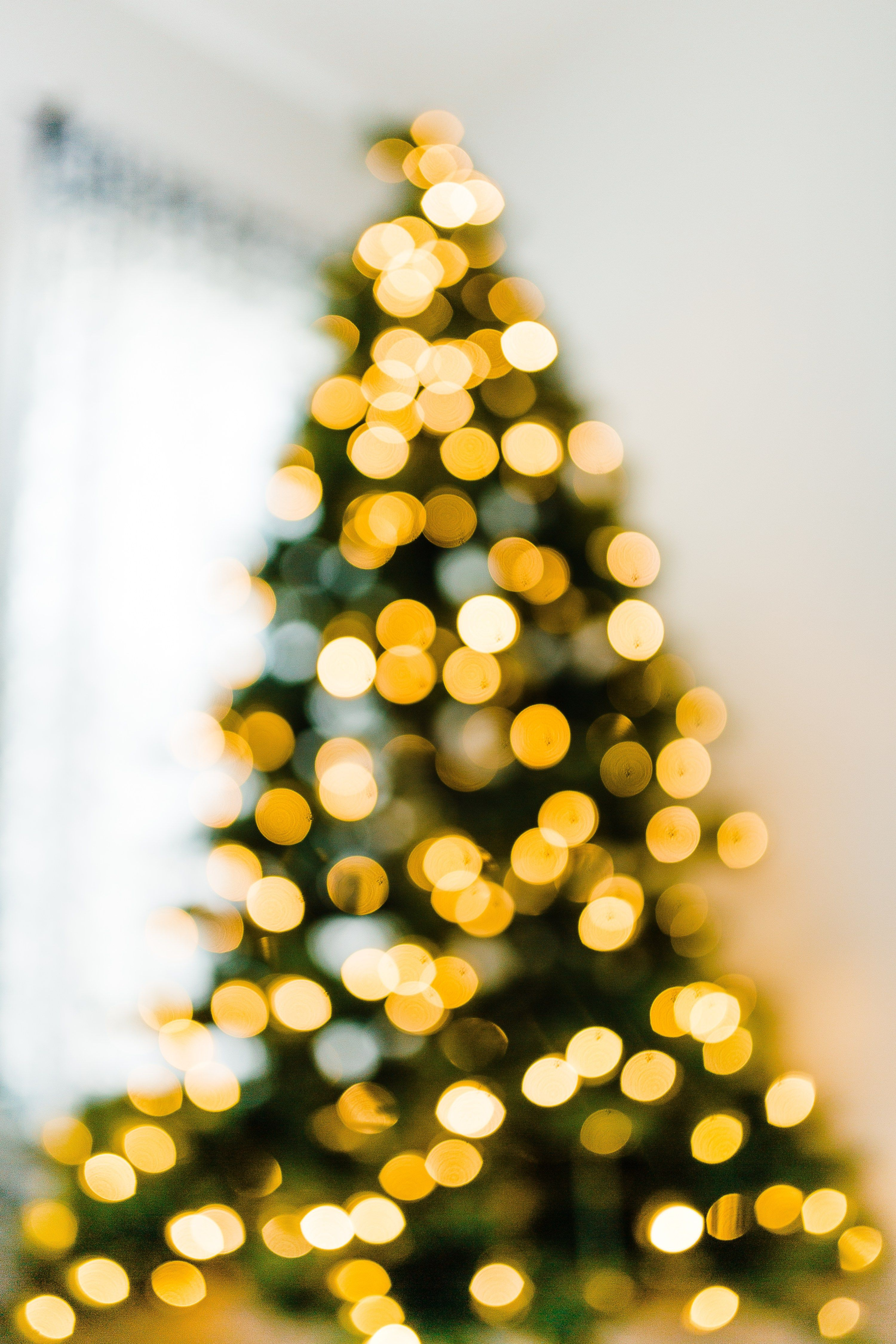 How to Blur Christmas Lights in Background | Photography tutorials ...