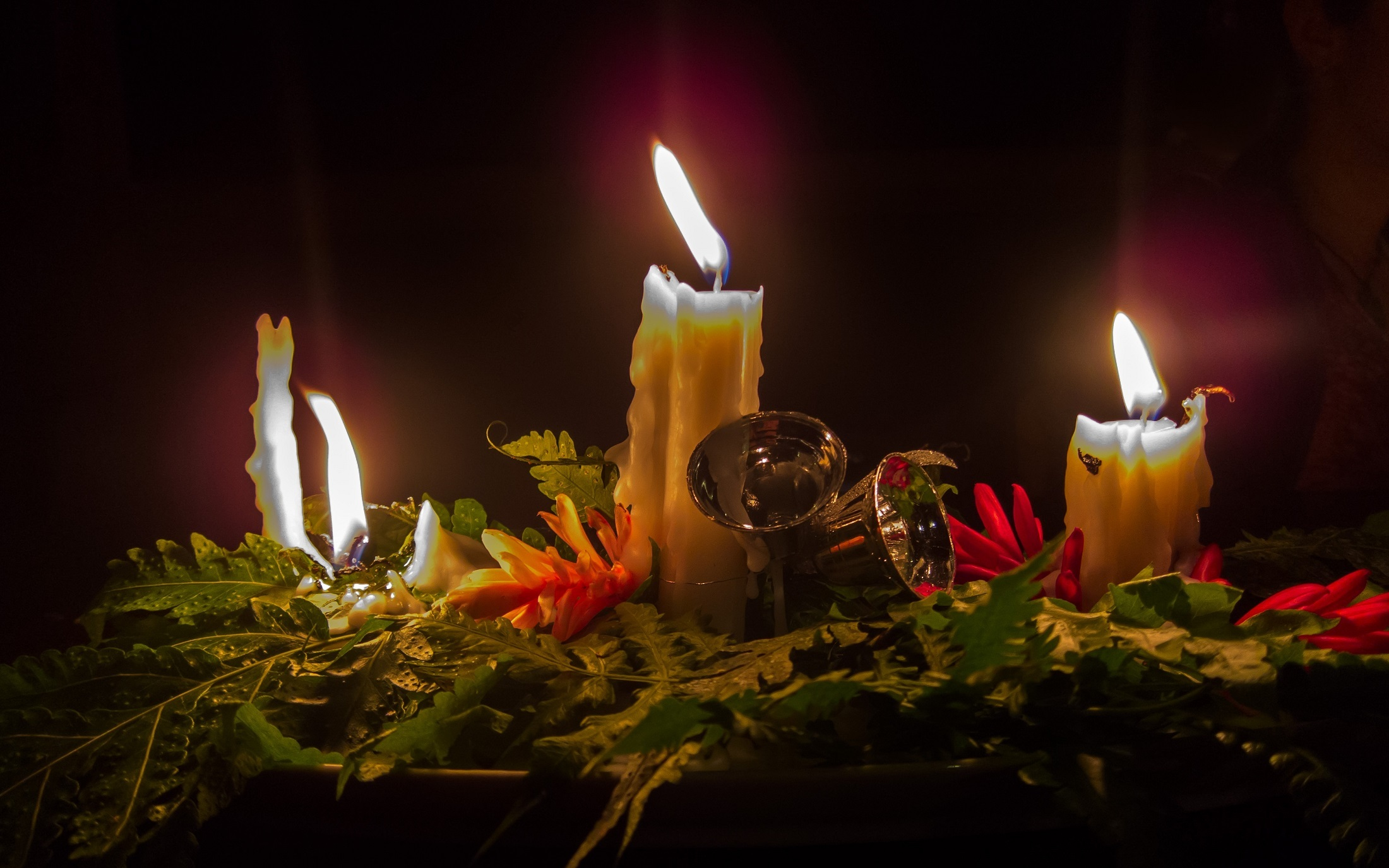 Christmas Candles, Burning, Candle, Christmas, Festival, HQ Photo