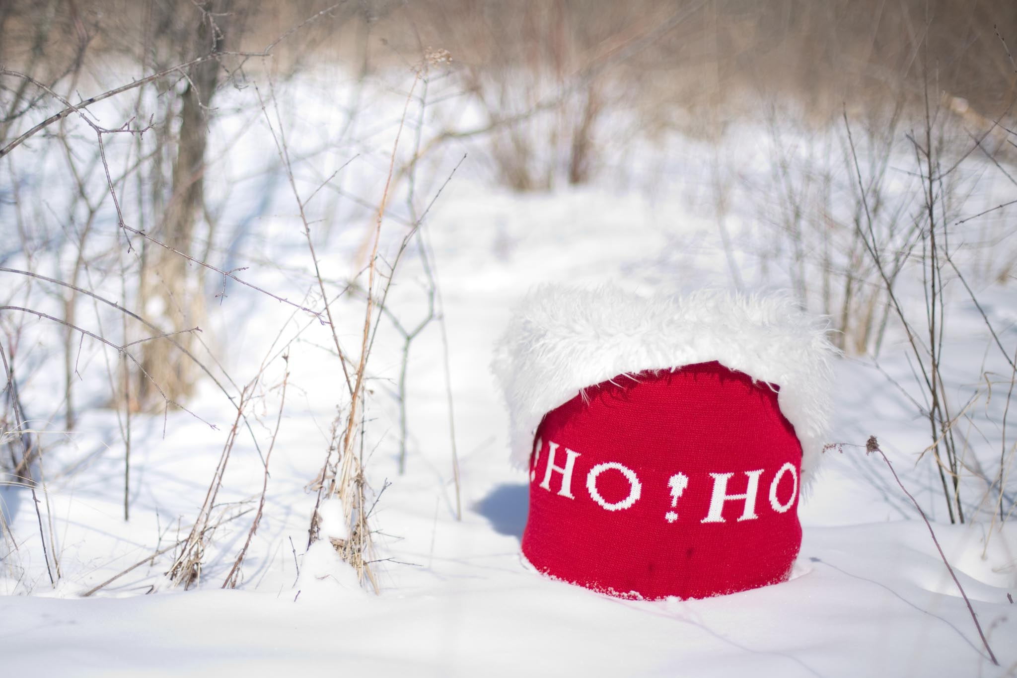f5c6a49dad5ad Free photo  Christmas Hat - Snow