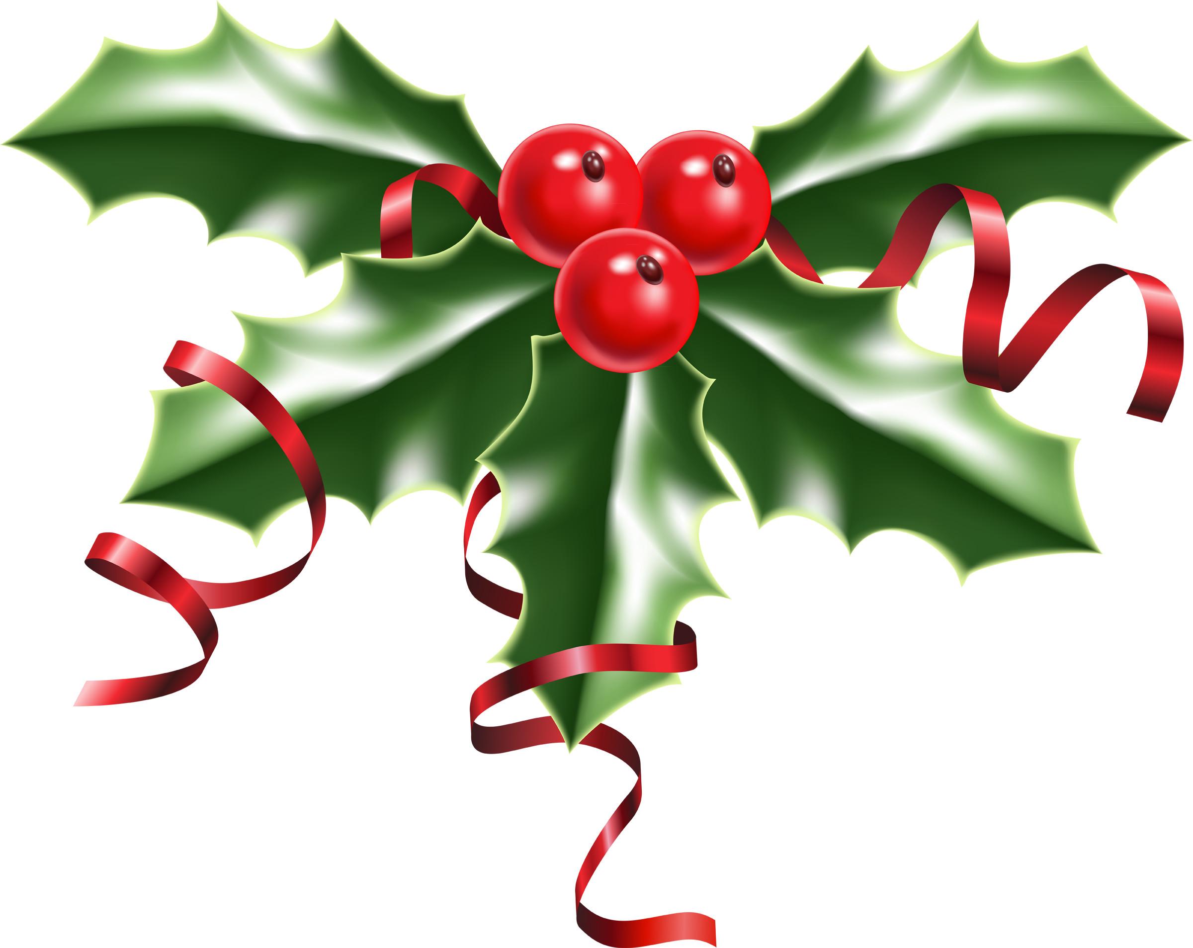 Christmas holly photo