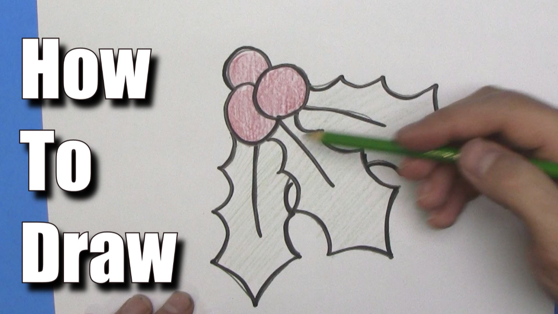 How to Draw Christmas Holly -Step by Step - YouTube