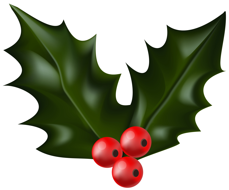 Christmas Holly Mistletoe PNG Clip Art | Gallery Yopriceville ...